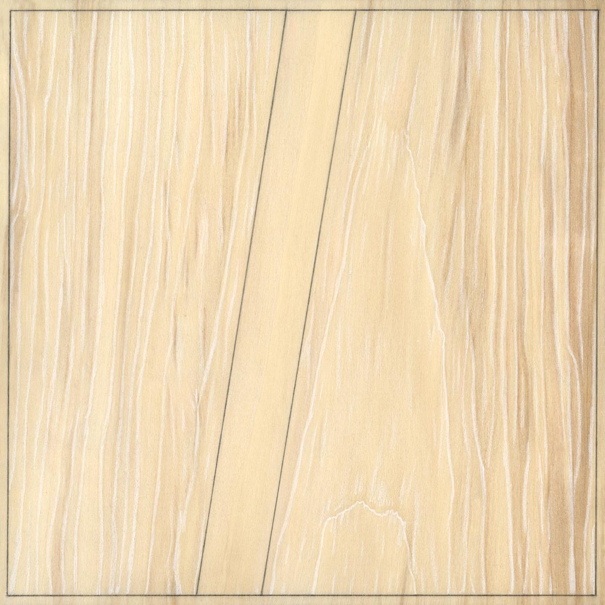 """Eleven  Graphite / Colored Pencil / Wood 7"""" x 7"""" x 1"""" 2013"""