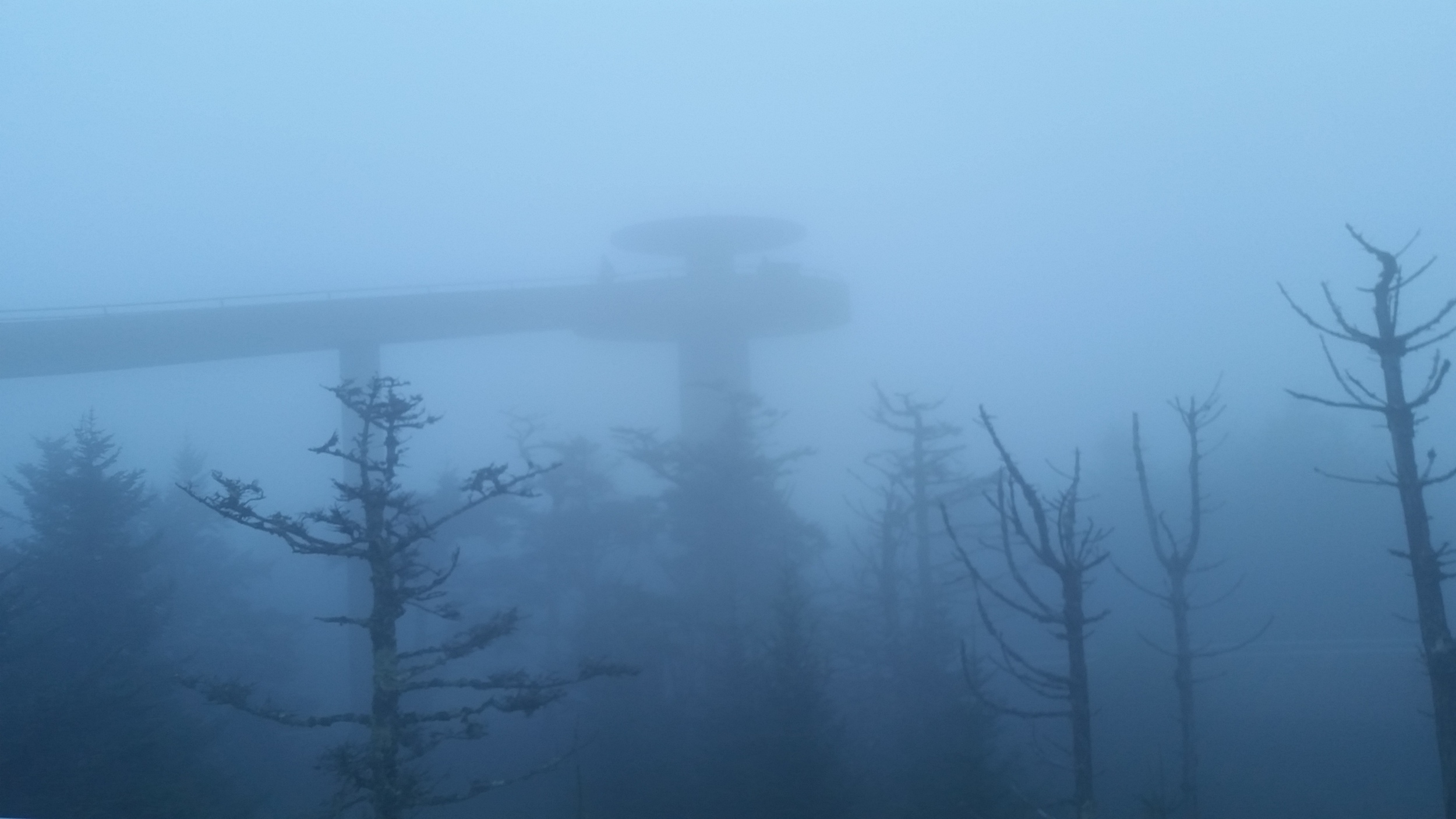 An outtake from   Myst  . JK, this is   Clingman's Dome  , an observation tower at the highest point in the Smoky Mountains. So high that it was inside a cloud. As in, we literally drove through a cloud to get to it, hence the eerie, misty pic.