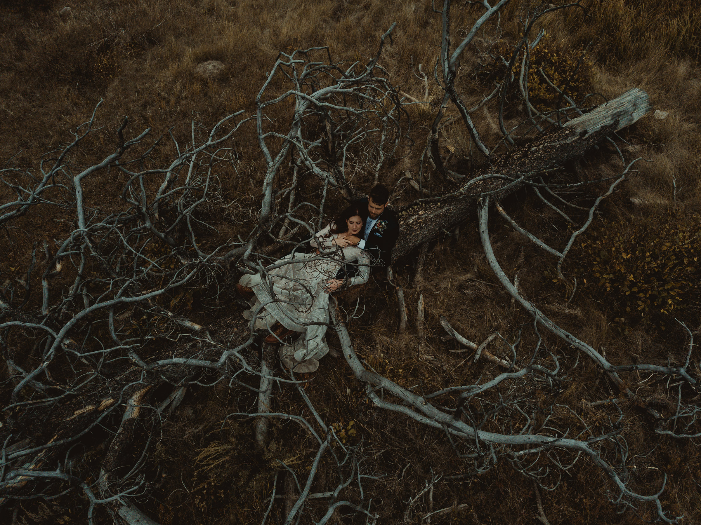 mr-mrs-likes-double-a-barn-drone-photo-of-couple-in-old-dead-tree-grand-lake-colorado-raelyn-ramey-photography-363.jpg