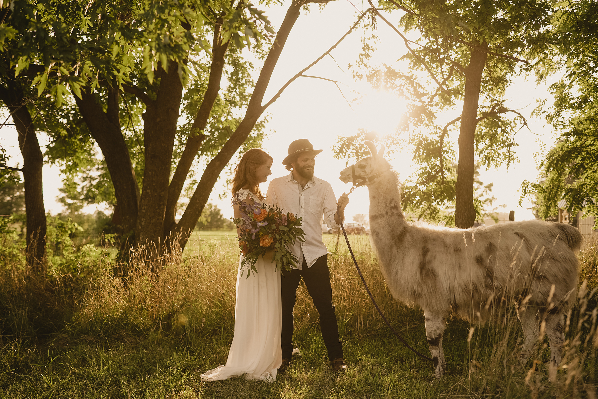 bride-groom-walking-llama-myrtle-mae-iris-aisle-dame-maiden-lavender-blue-floral-raelyn-ramey-photography.jpg