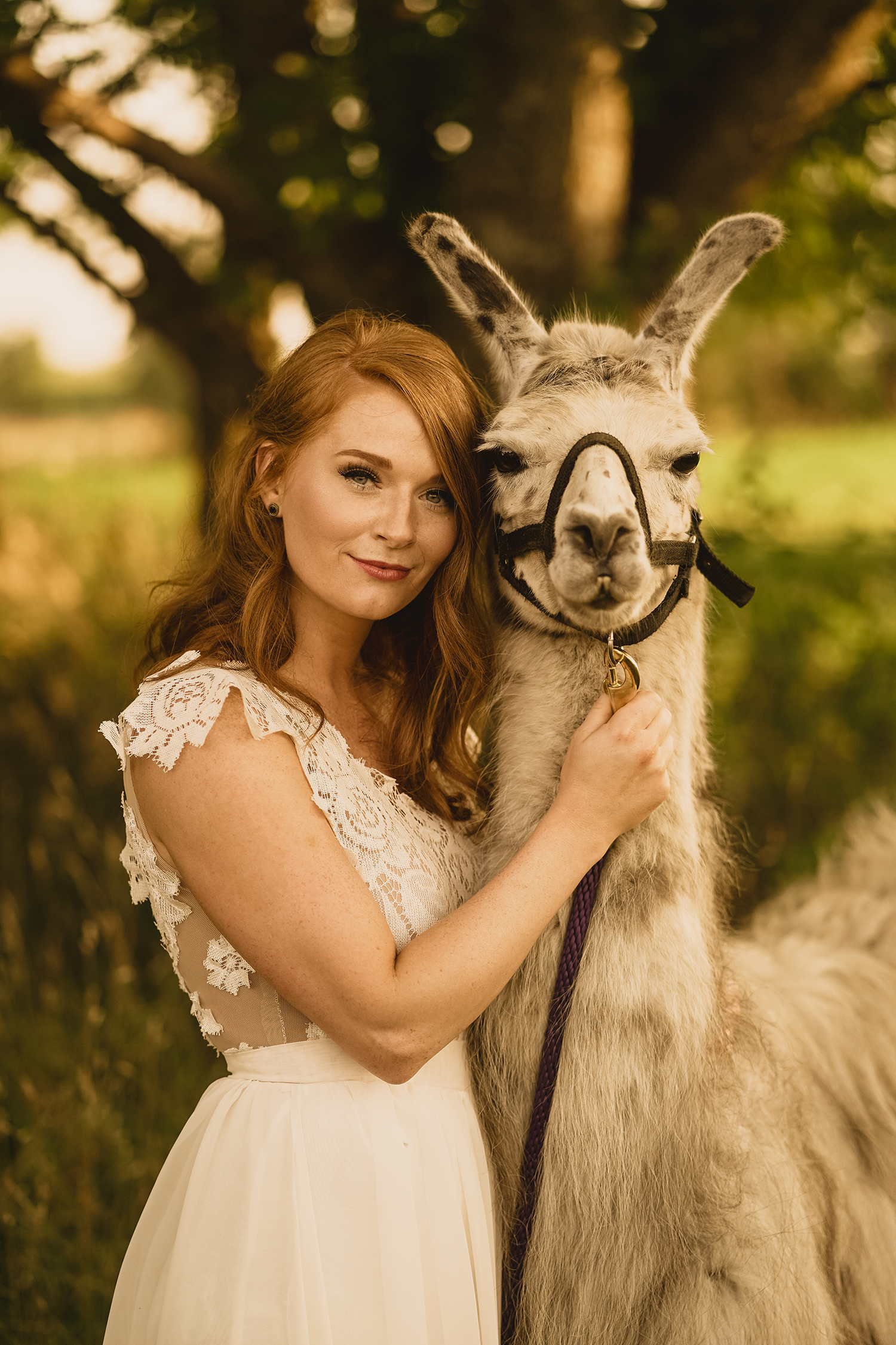 close-up-of-bride-with-llama-myrtle-mae-iris-aisle-dame-maiden-lavender-blue-floral-raelyn-ramey-photography.jpg
