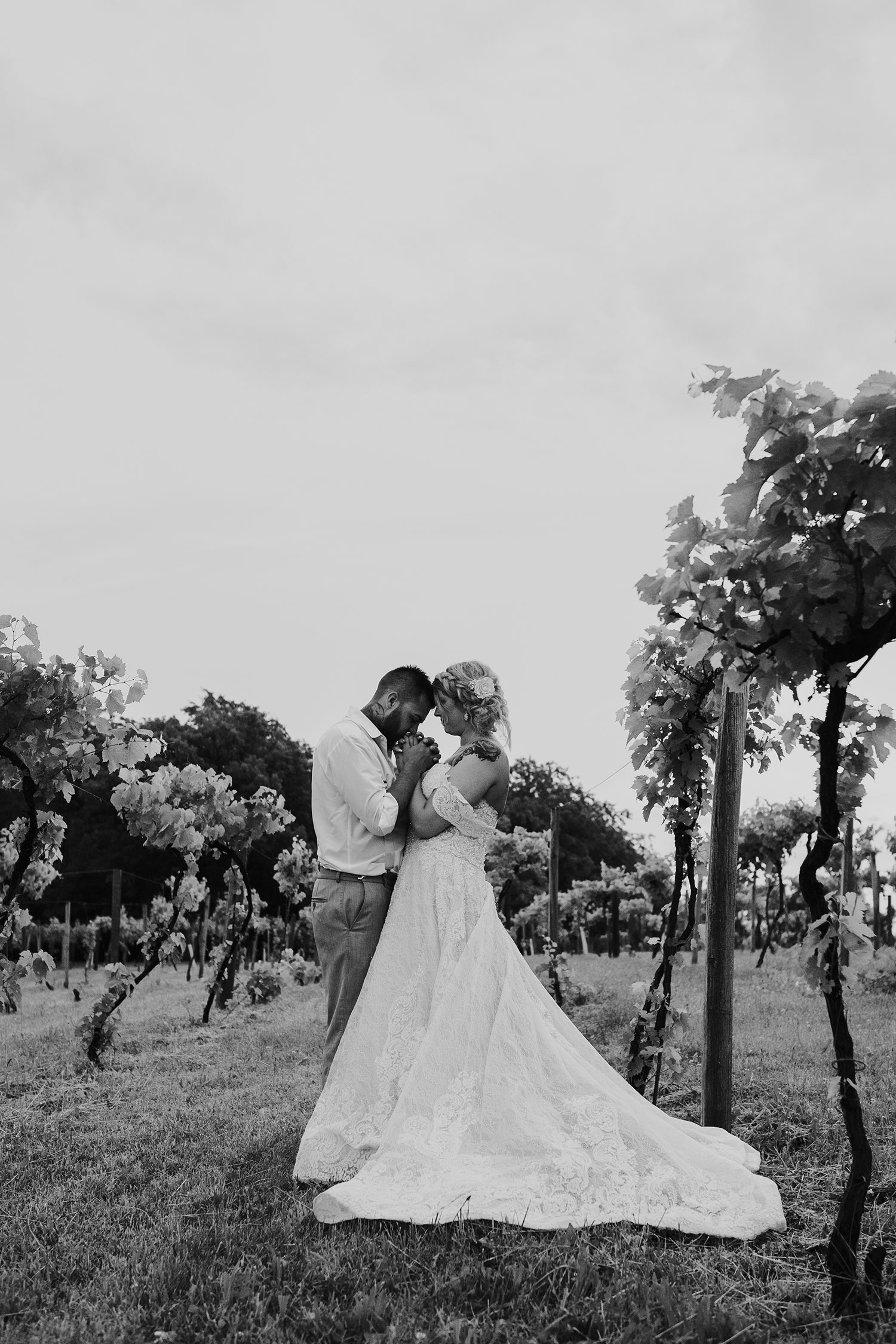 bride-groom-in-vineyard-holding-hands-and-kissing-wedding-summerset-winery-indianola-iowa-raelyn-ramey-photography.jpg
