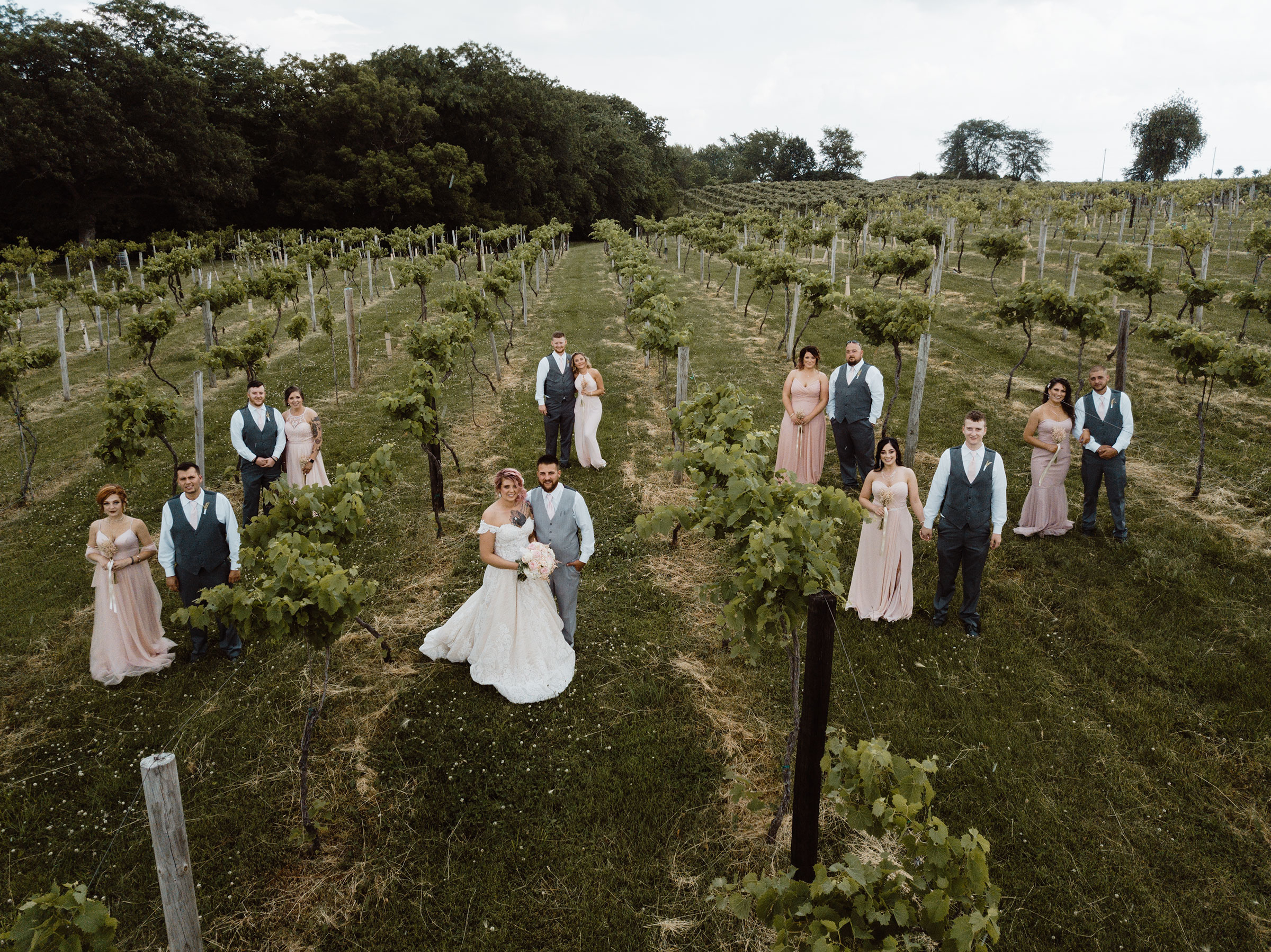 wedding-party-standing-in-vineyard-drone-shot-summerset-winery-raelyn-ramey-photography.jpg