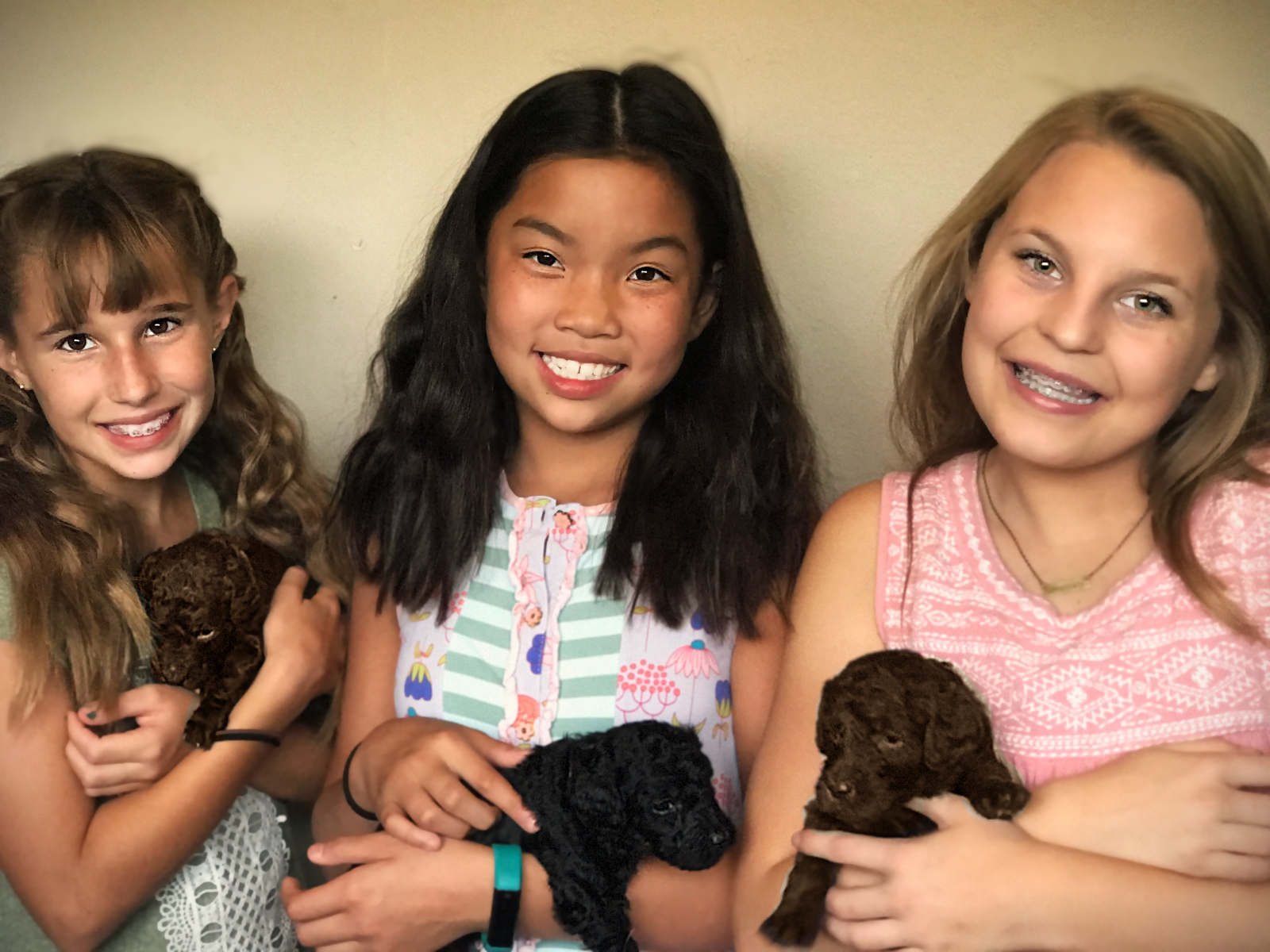 girls_holding_pups_standard_poodle_puppies.jpg