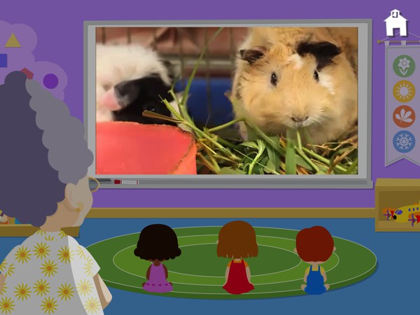 You can watch educational video clips of classroom activities