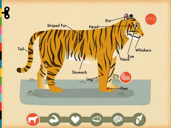 In Mammals by Tinybop, kids can explore the anatomy of various animals and see how they eat, move, grow, and feel.