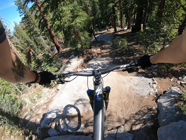 💥Highlights from Mr. Toads Wild Ride!  Yesterday's #dawnpatrol mission checked all the boxes: long climb, awesome views, high speeds, and proper tech. Swipe to see 👉 . 💬What's your favorite trail in Tahoe? . #dialedhealth @iamspecialized_mtb