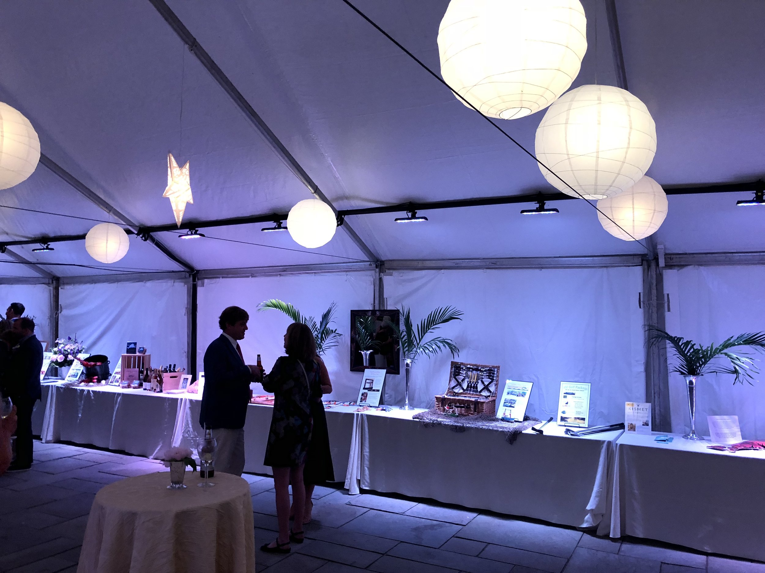 LED lighting for auction items