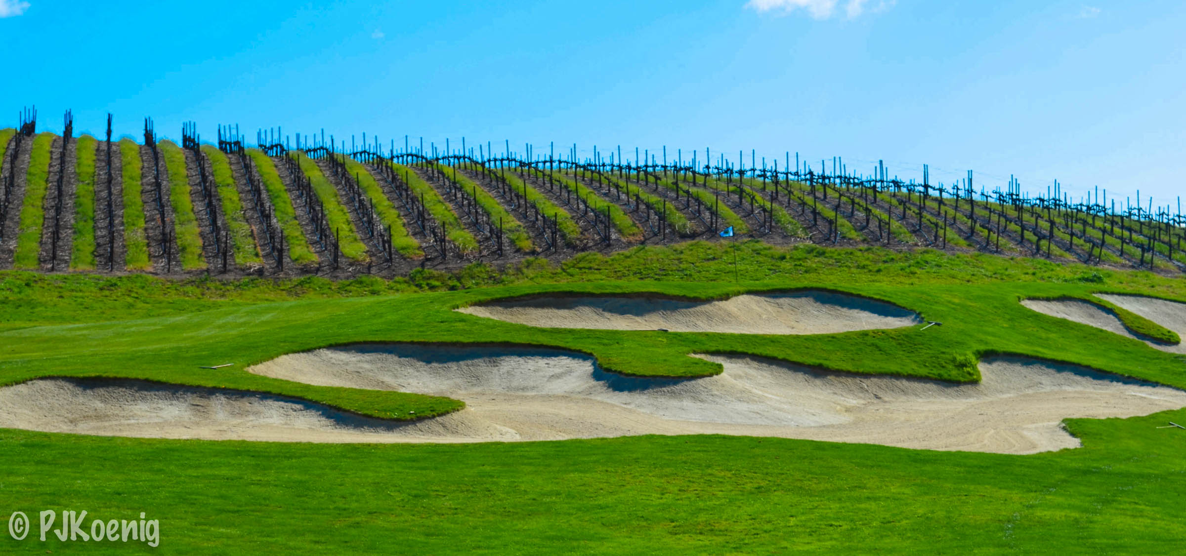 The Course at Wente Vineyards -Livermore, CA