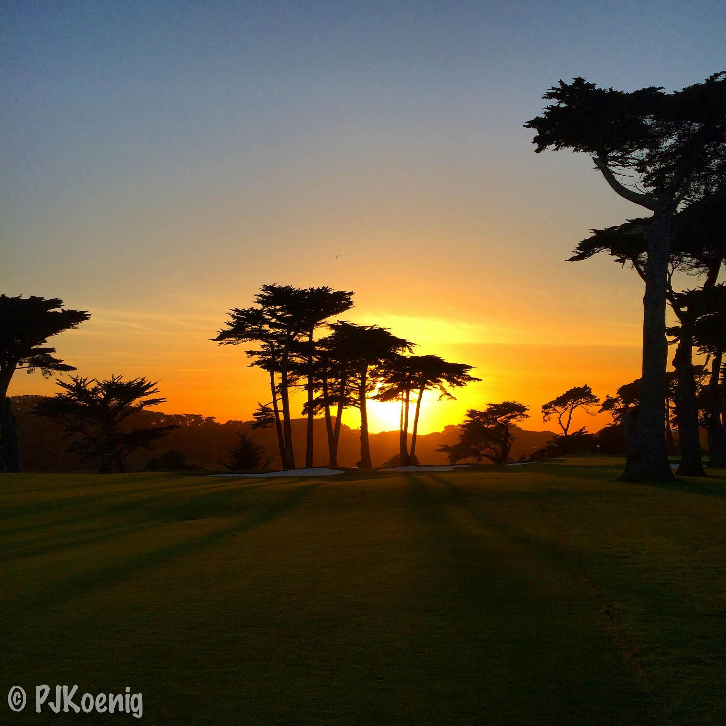 Harding Park Golf Course - San Francisco, CA