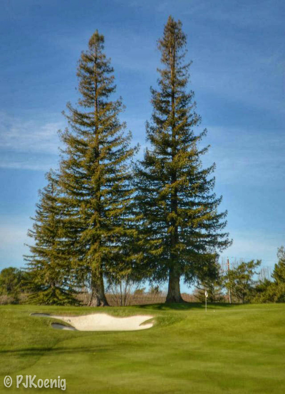 Silverado Golf and Country Club - Napa, CA
