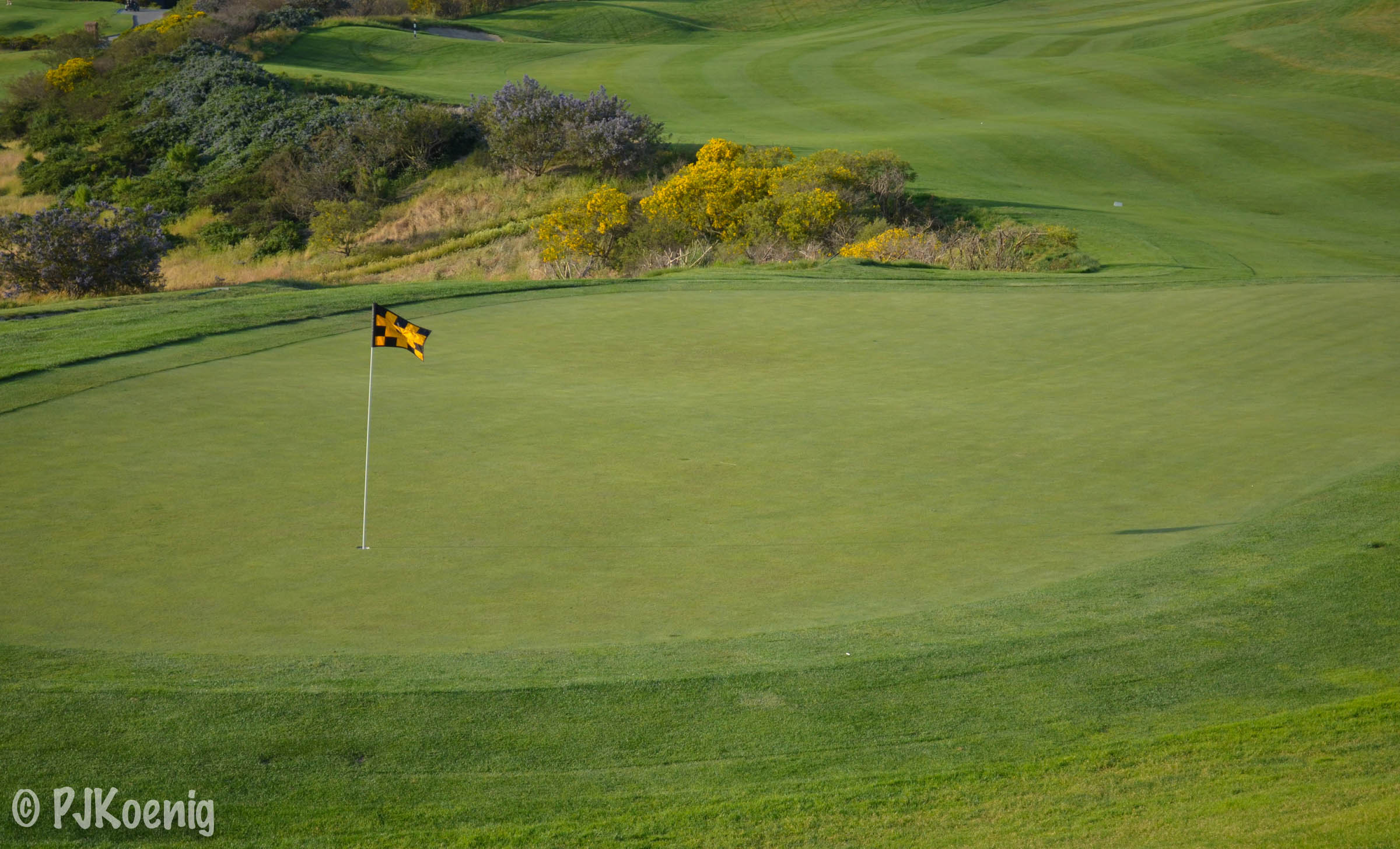 The Bridges Golf Club - San Ramon, CA