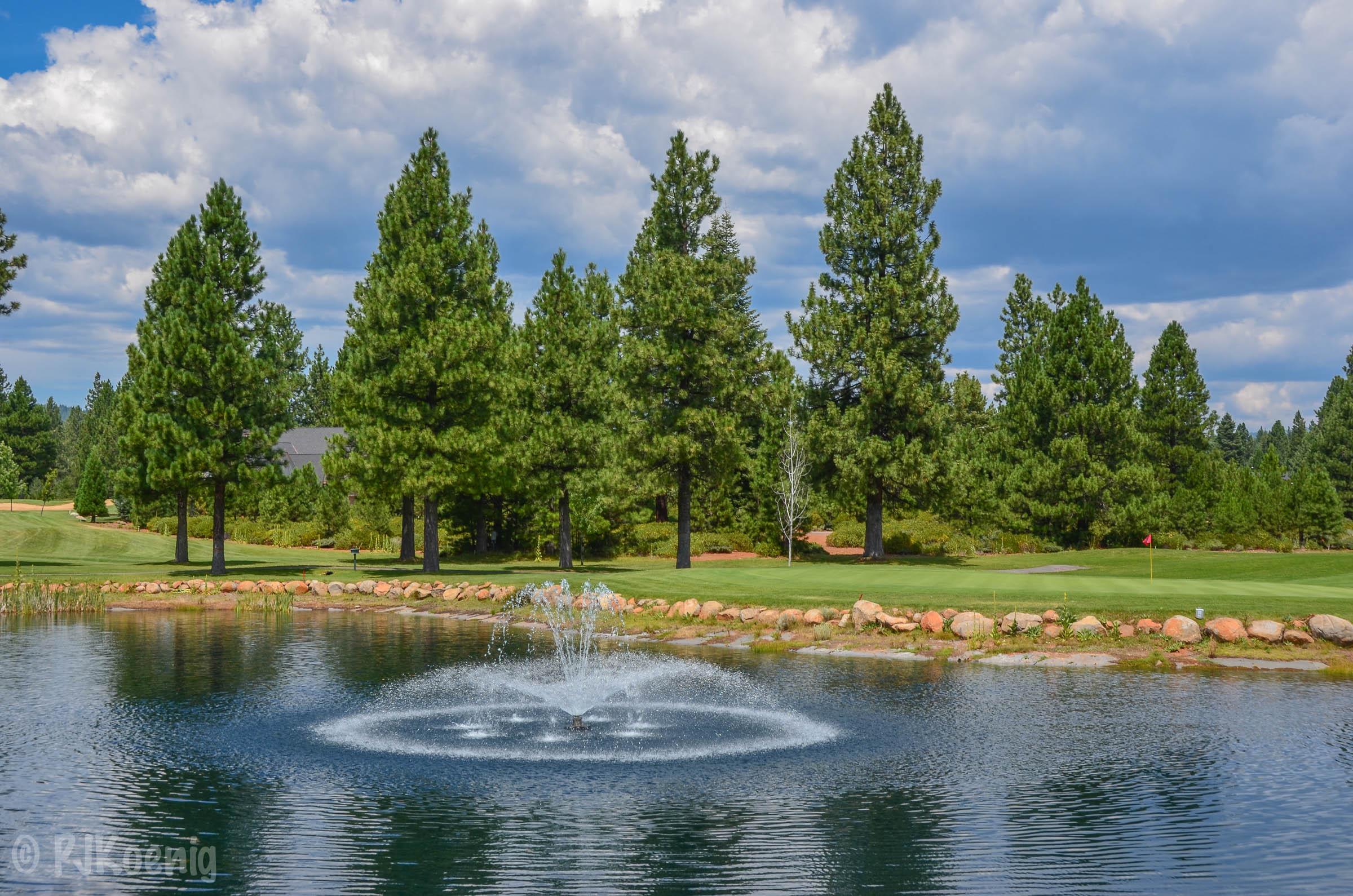 Bailey Creek -Lake Almanor, CA