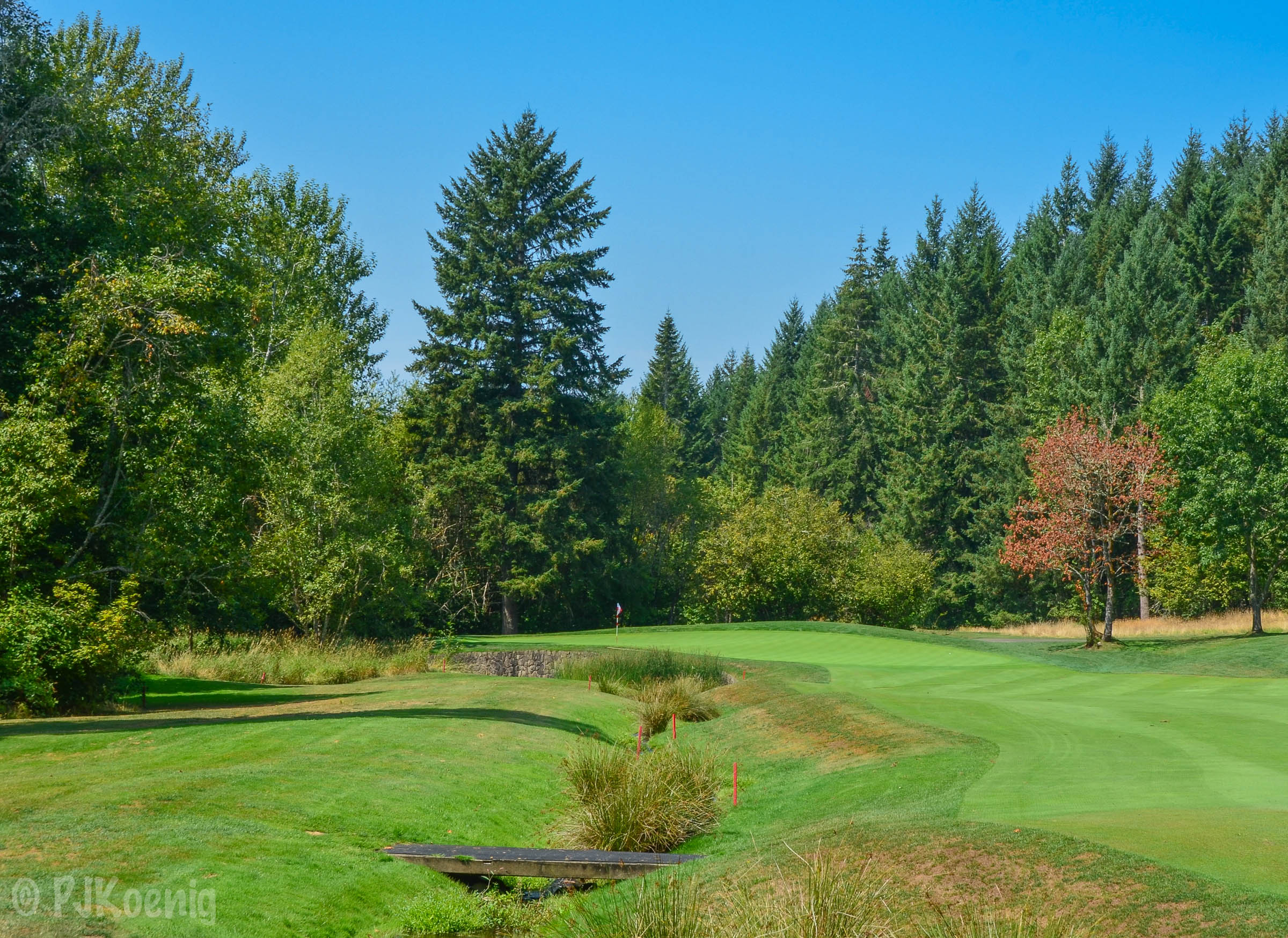 Pumpkin Ridge - Witch Hollow1-10.jpg