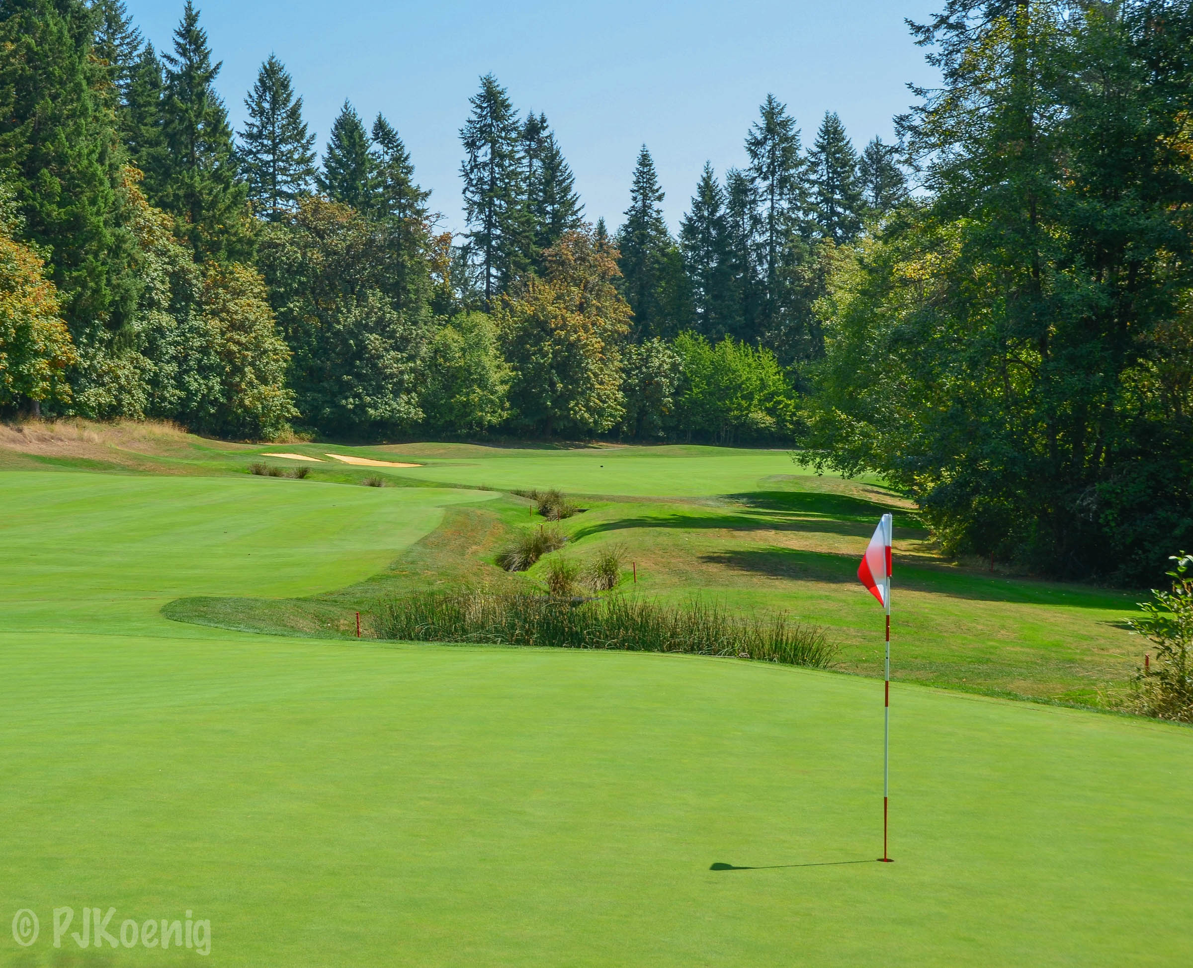 The par 4, 6th hole at Pumpkin Ridge.