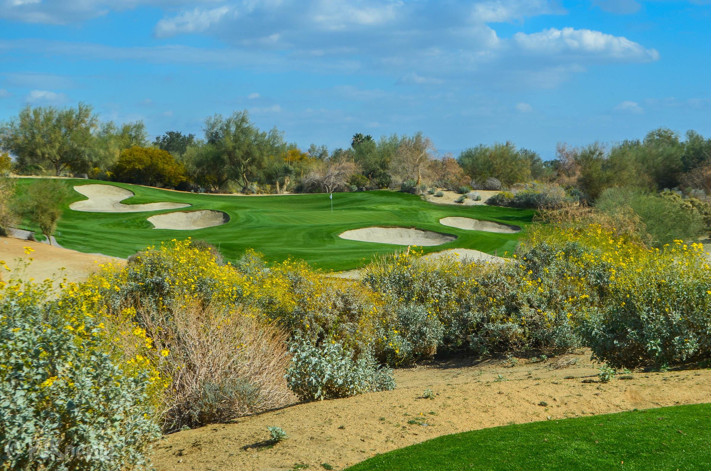 Desert Willow FireCliff1-3.jpg