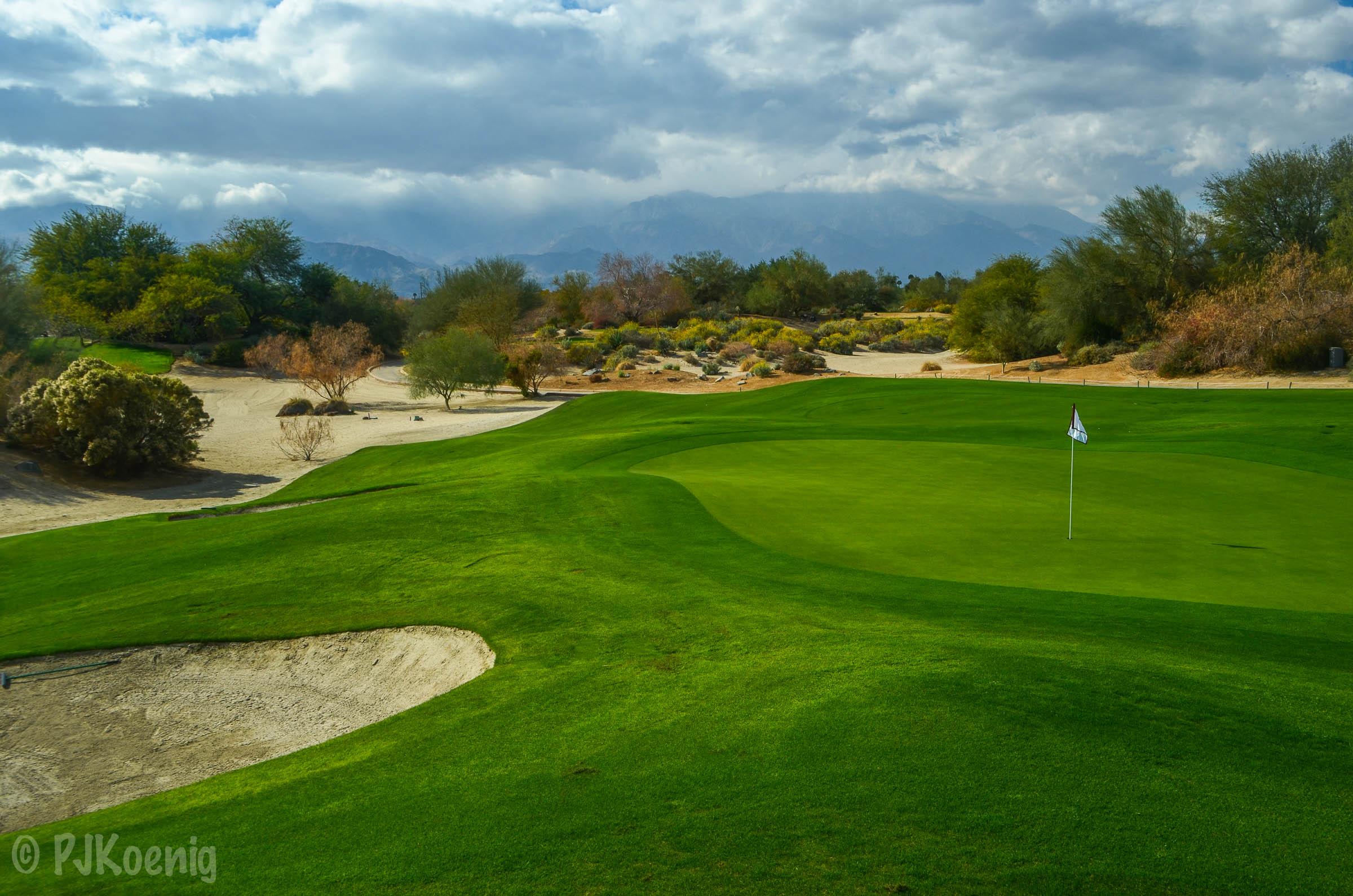 Desert Willow FireCliff1-4.jpg