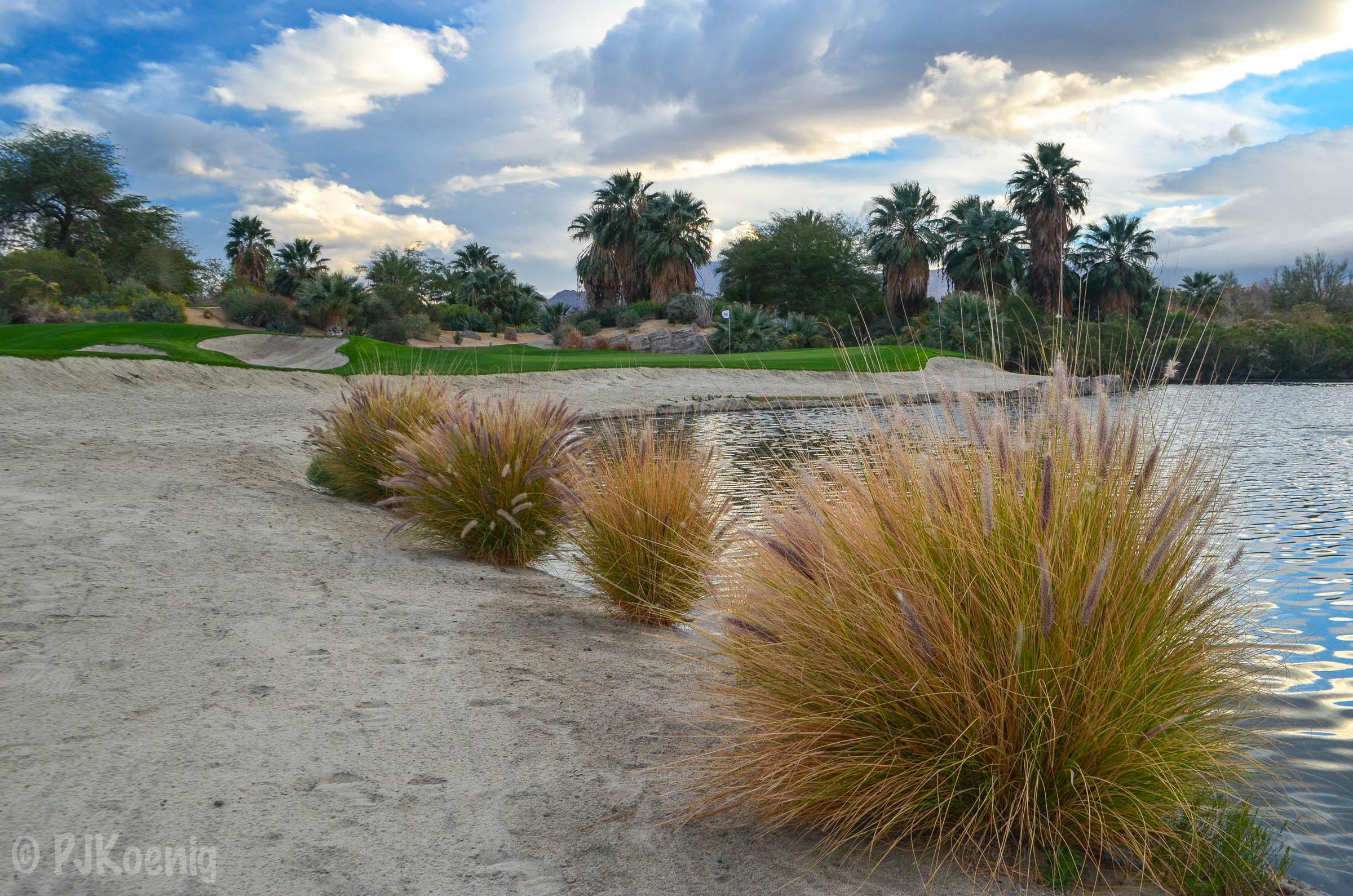 Desert Willow FireCliff1-41.jpg