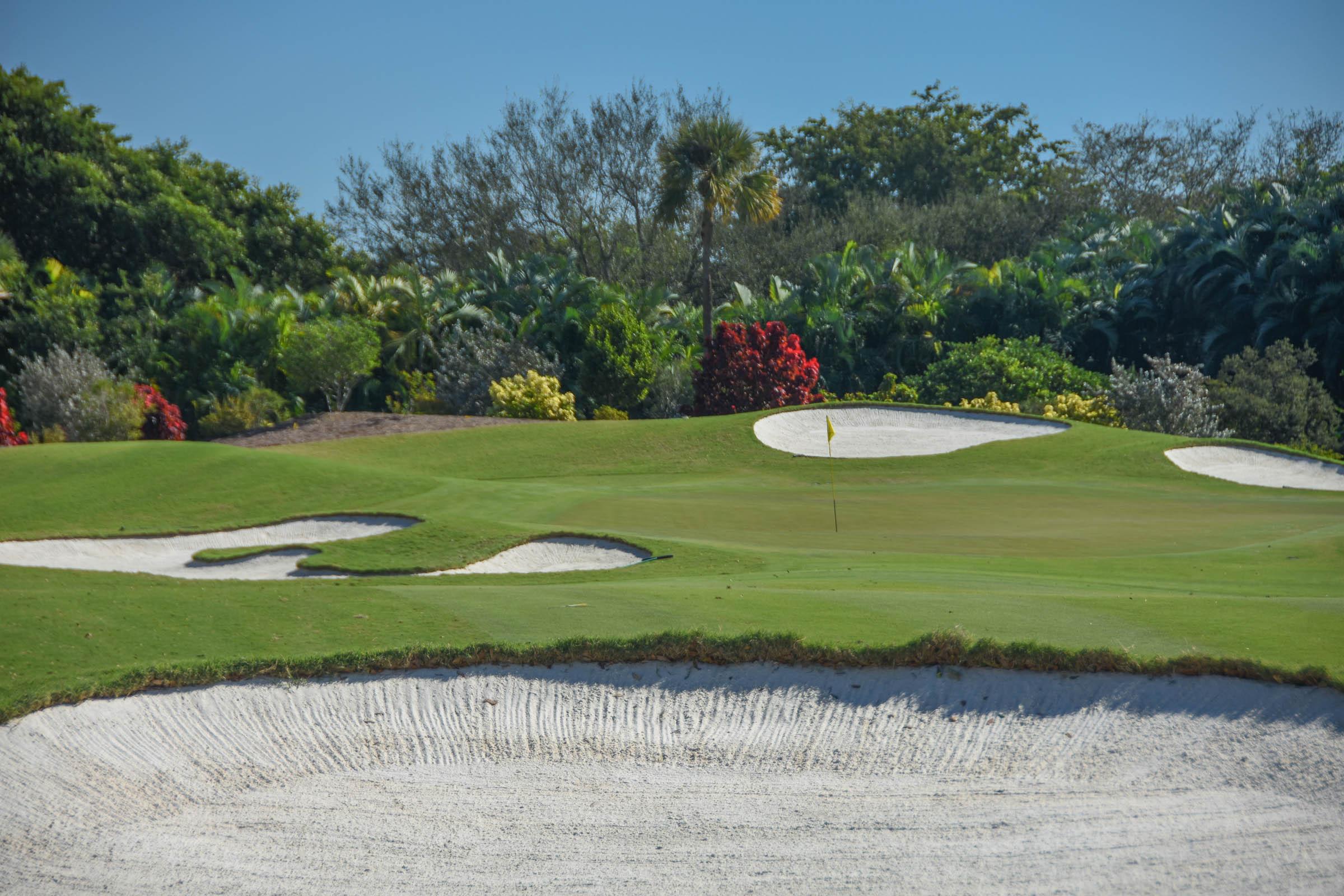Adios Golf Club1-8.jpg