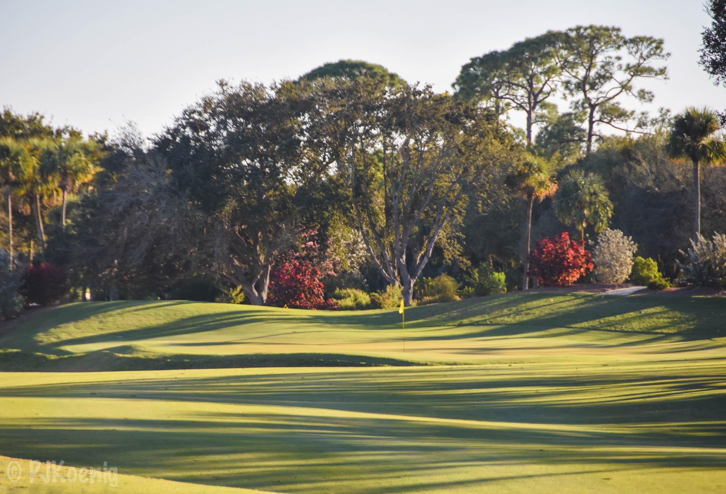 Adios Golf Club1-88.jpg