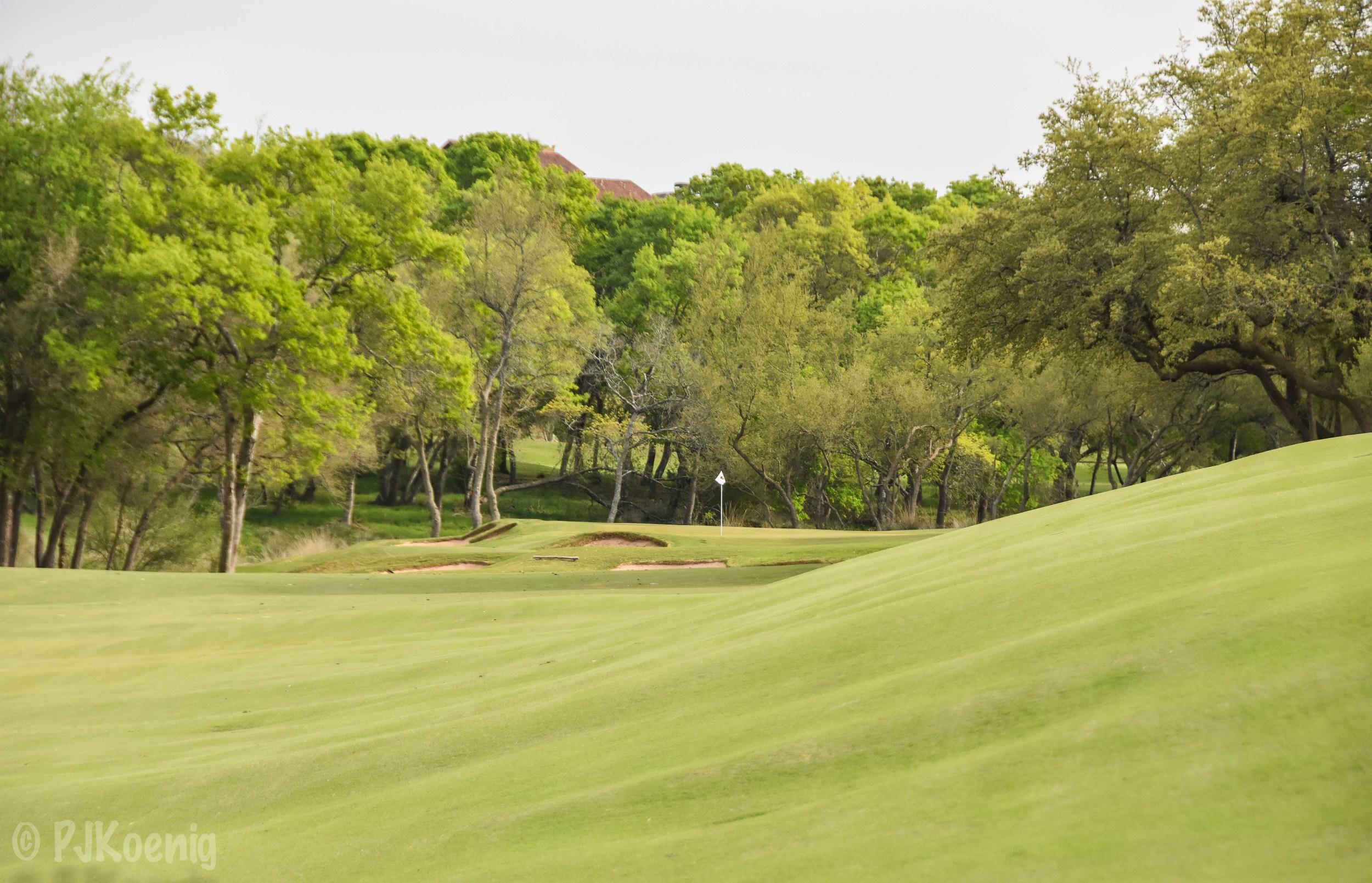Spanish Oaks1-50.jpg