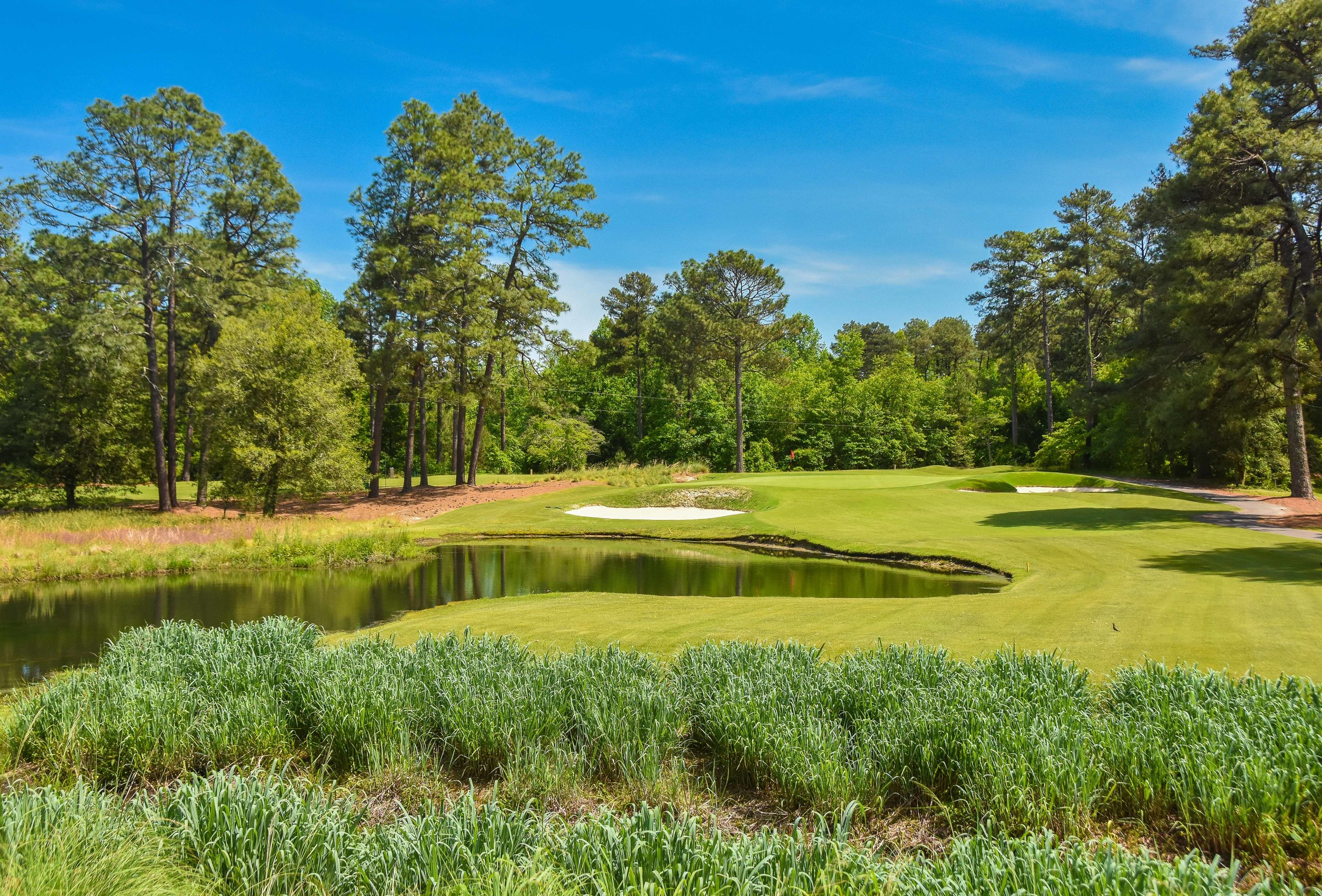 Pine Needles - Southern Pines, NC
