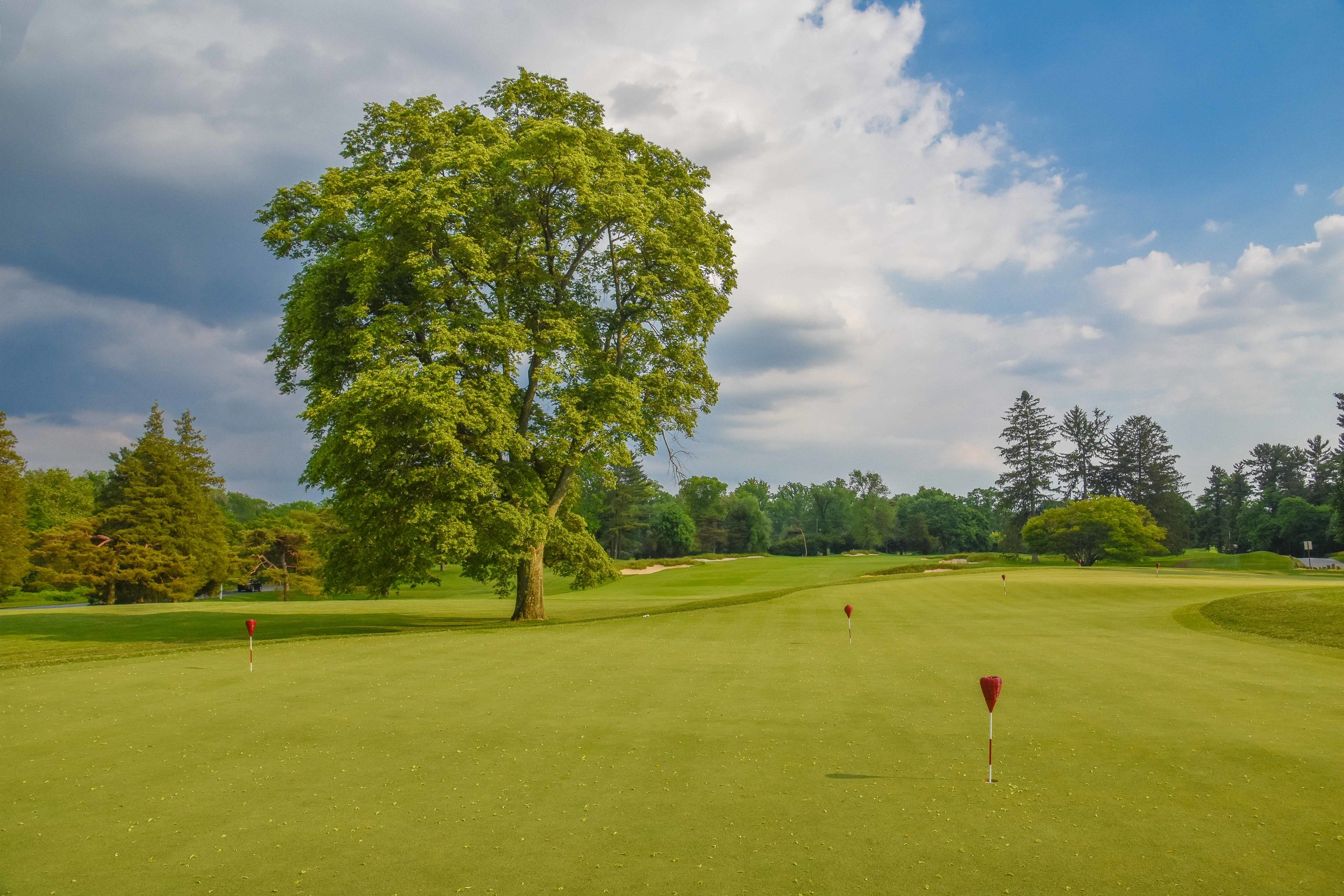 Merion - East Course1-112.jpg