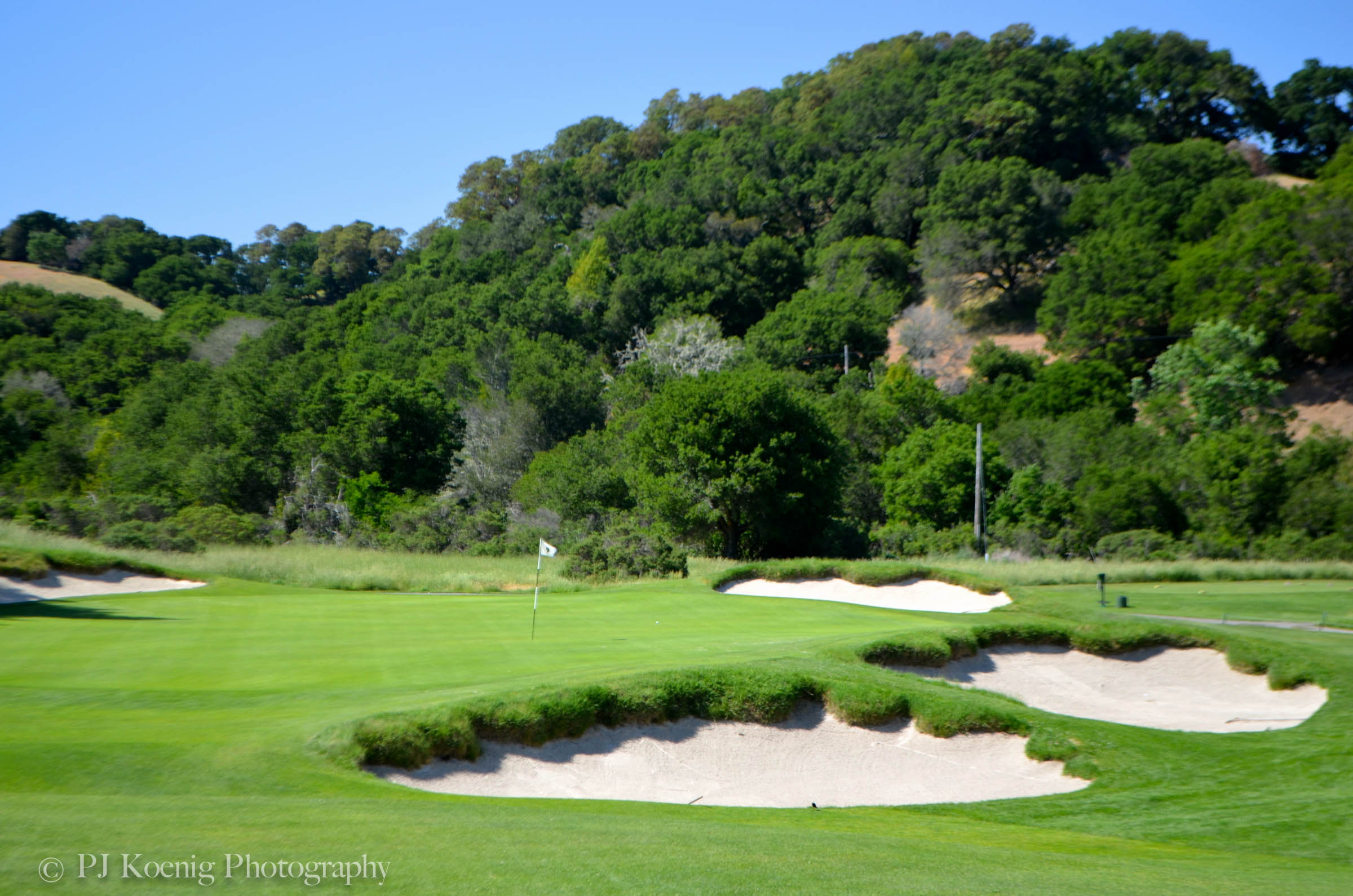 Allister Mackenzie's Meadow Club in Fairfax, CA