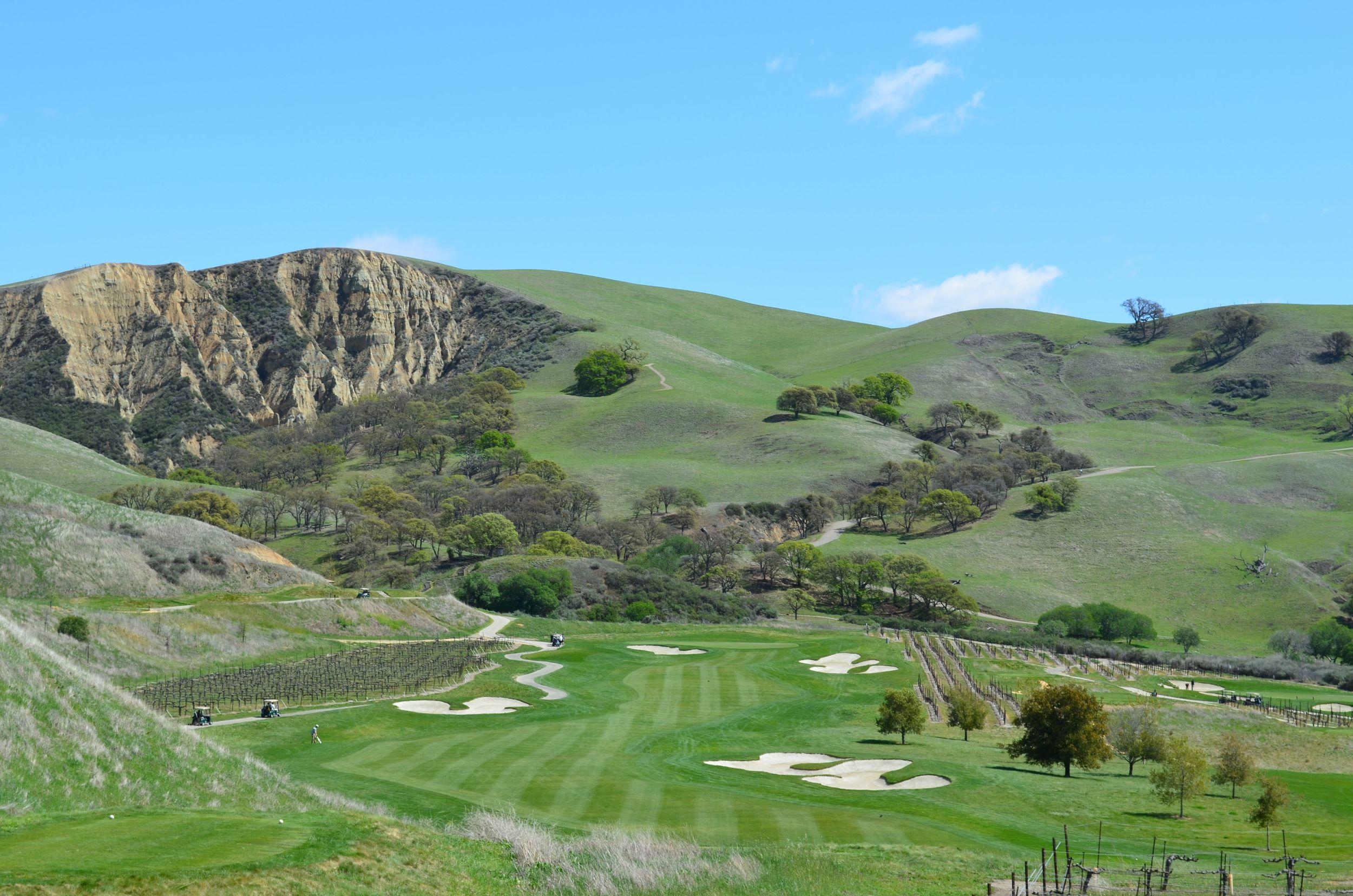 The Course at Wente Vineyards in Livermore