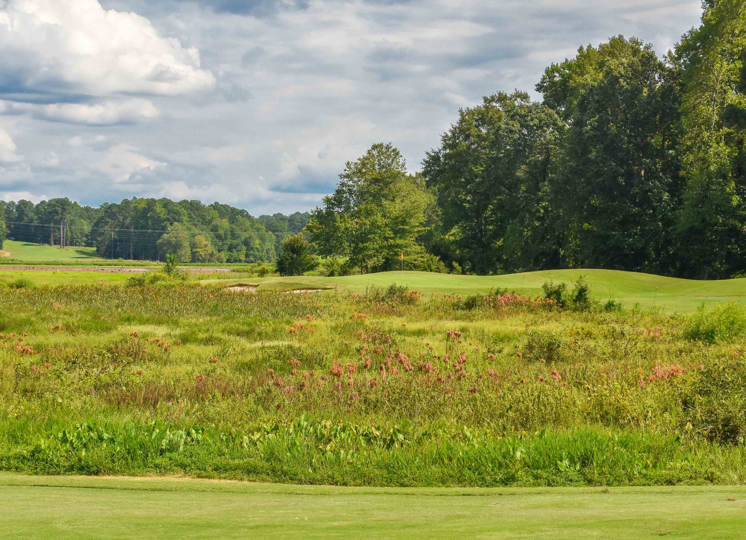 Grand National - Links Course1-47.jpg