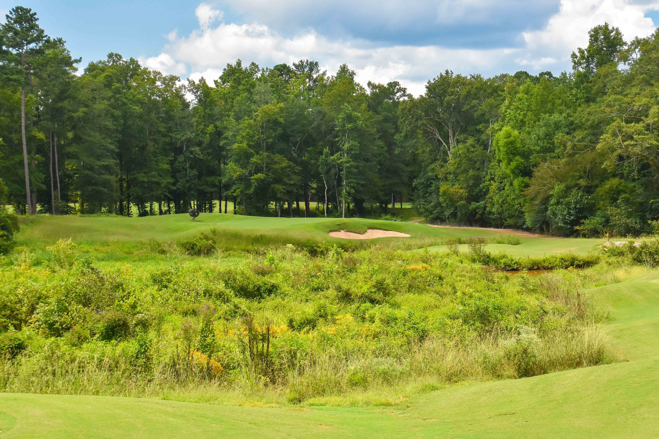 Grand National - Links Course1-41.jpg