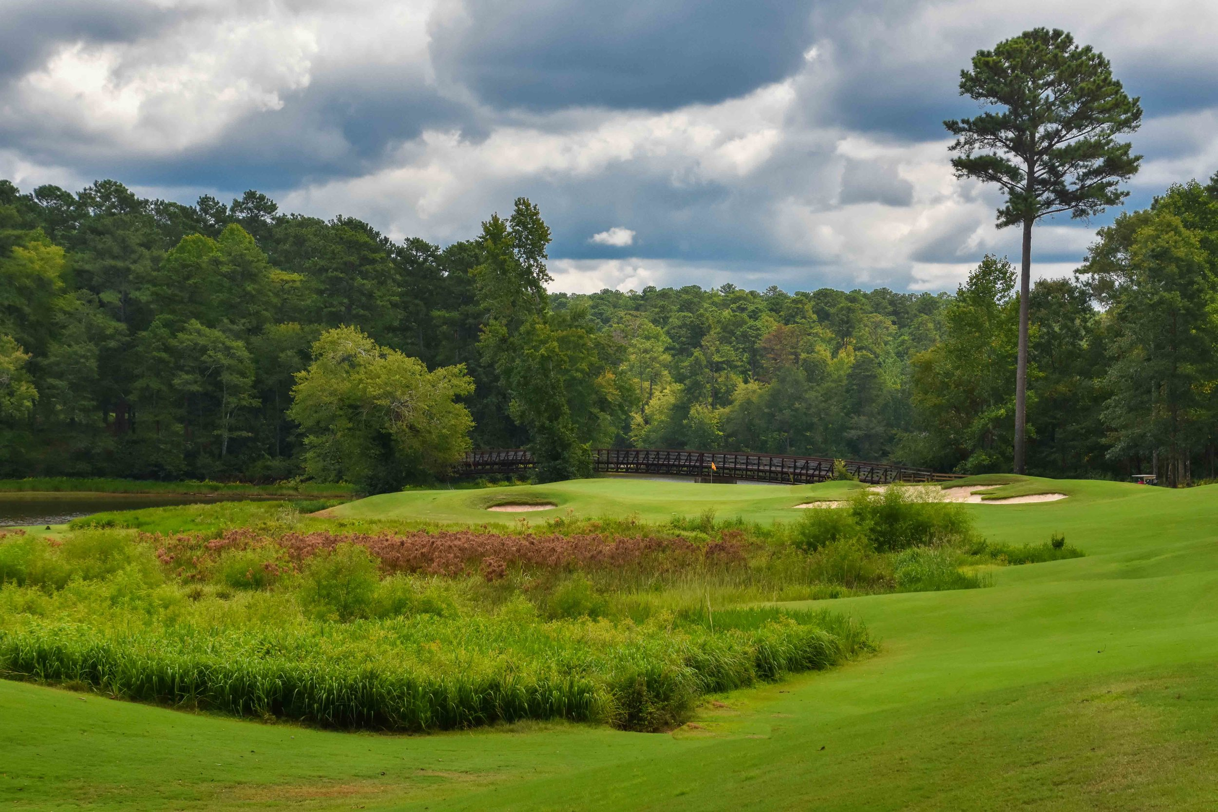 Grand National - Links Course1-7.jpg