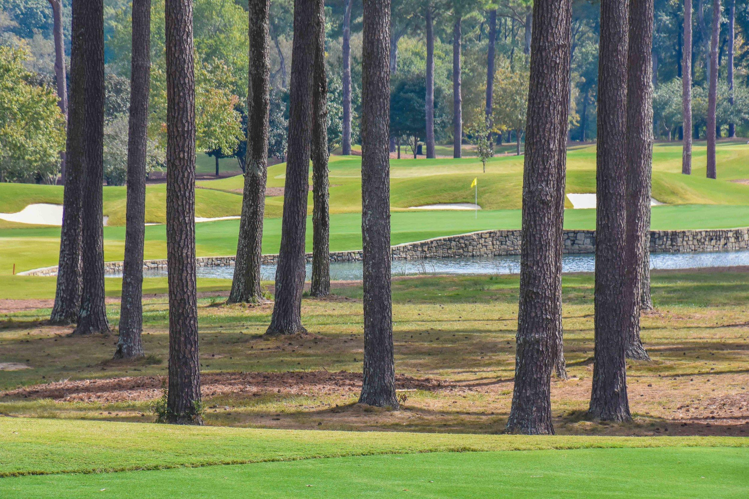 Atlanta Athletic Club - Highlands1-49.jpg