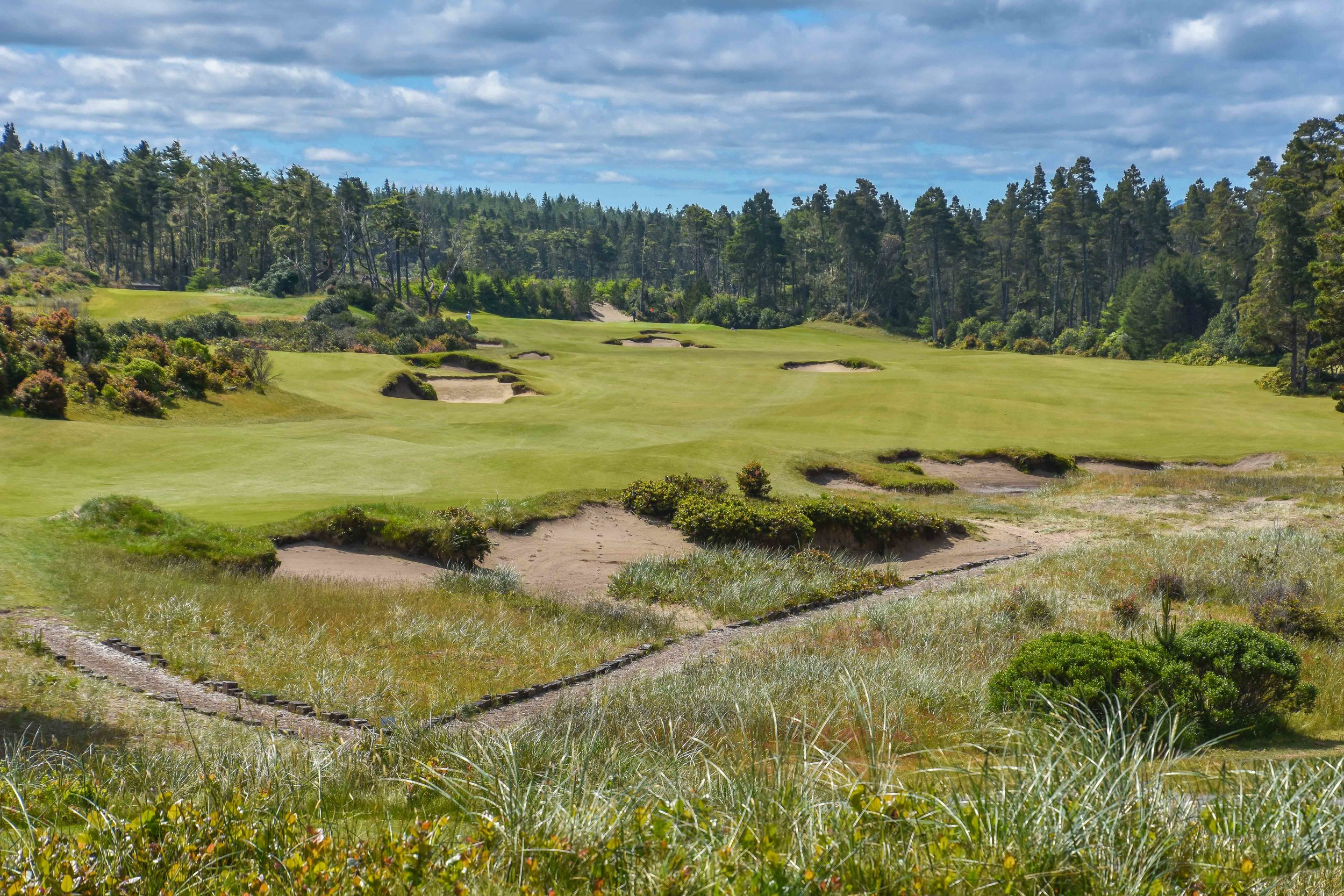 Bandon Trails1-12.jpg
