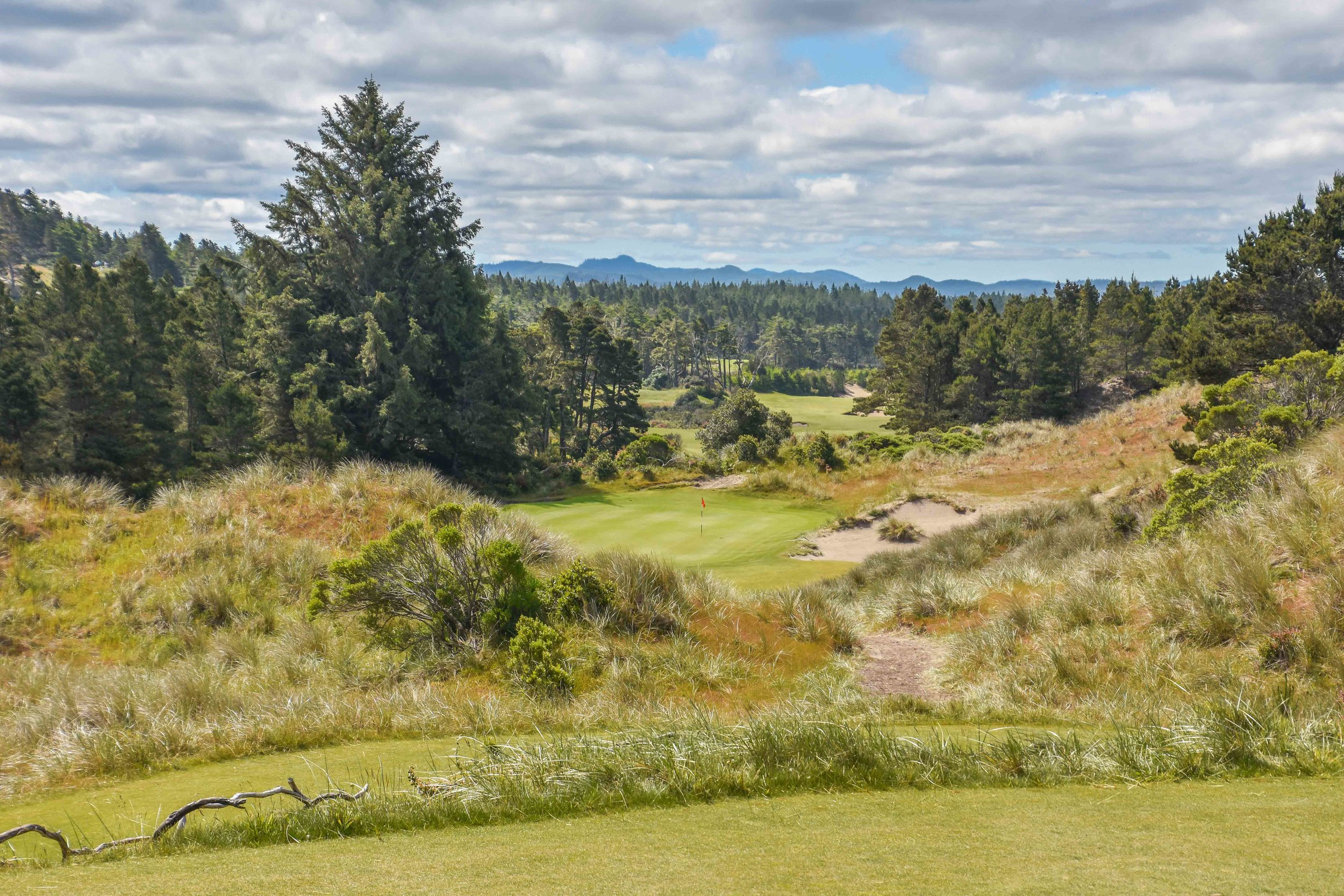 This is where we would drop out of the lead.  #2 at  Bandon Trails .