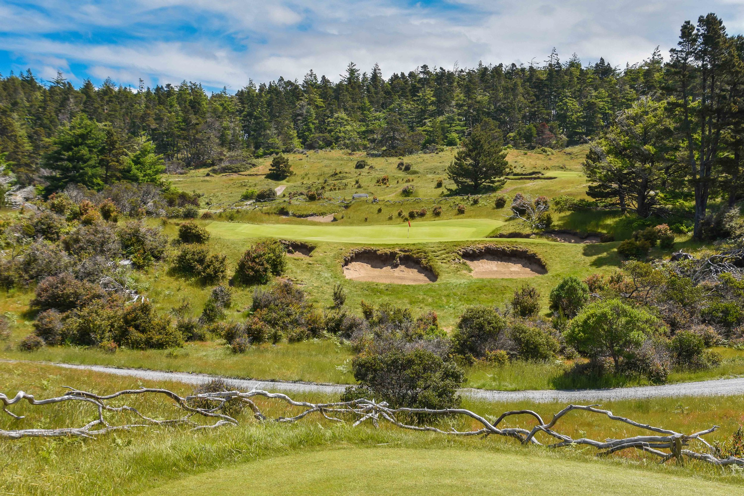 The popular 5th hole at  Bandon Trails.