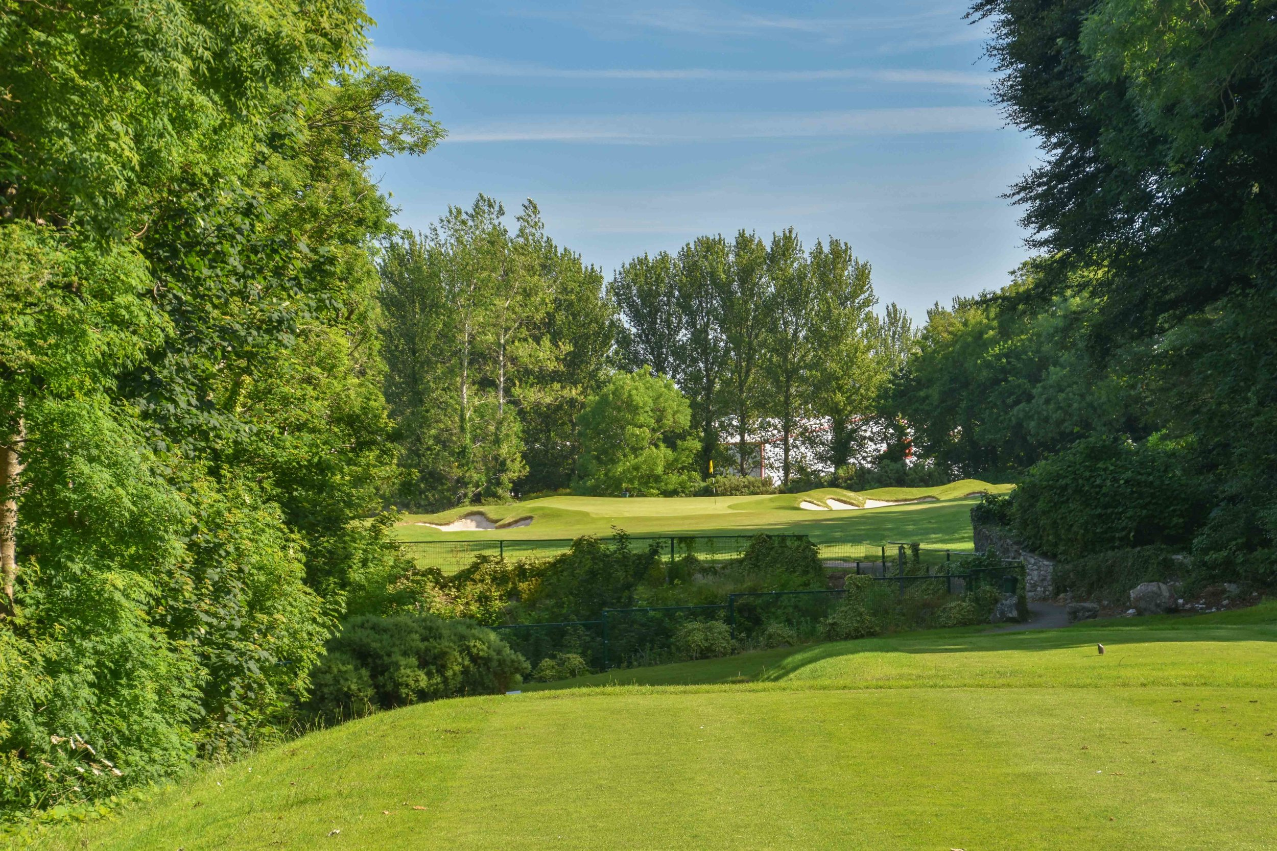 Cork Golf Club1-53.jpg