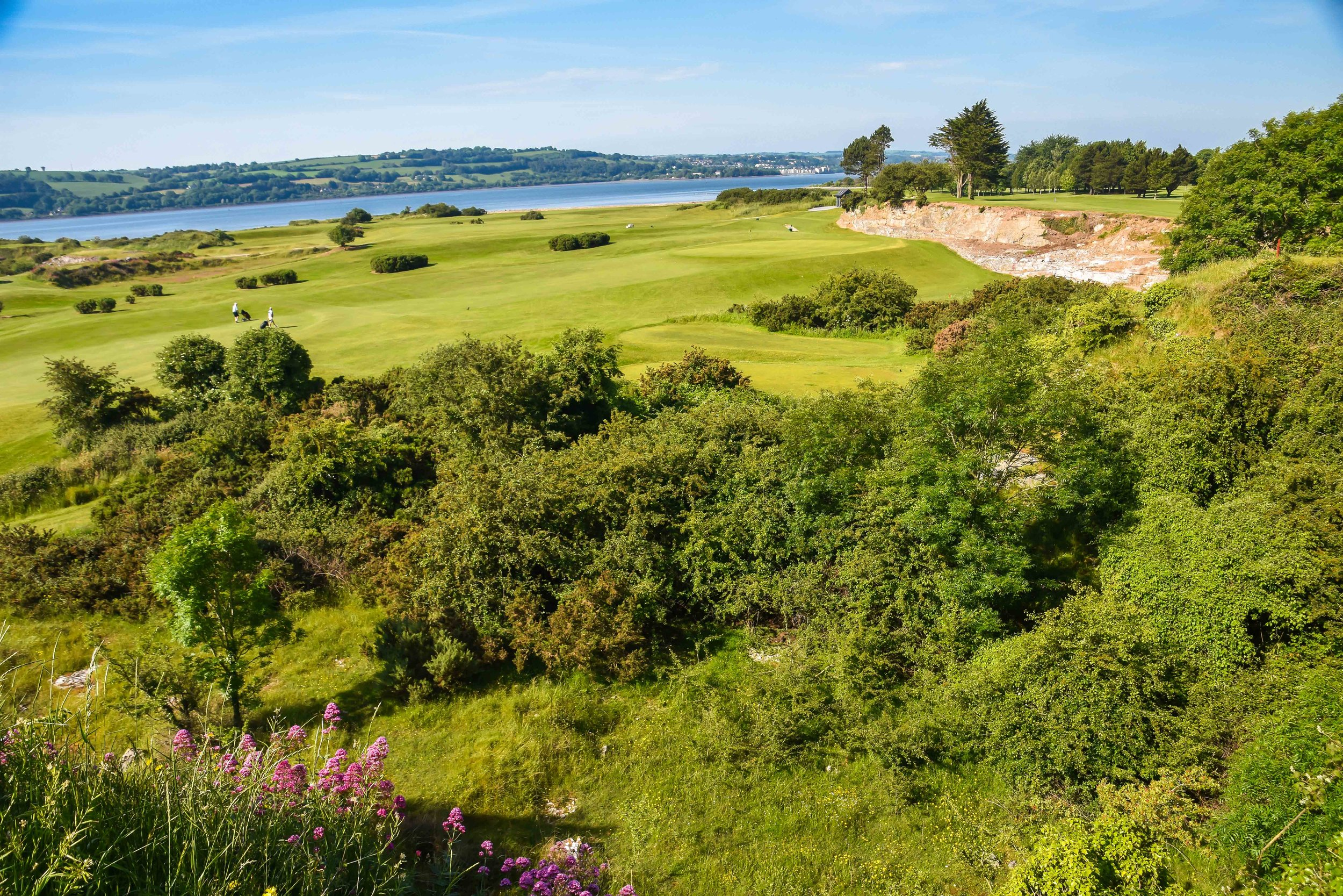 Cork Golf Club1-49.jpg