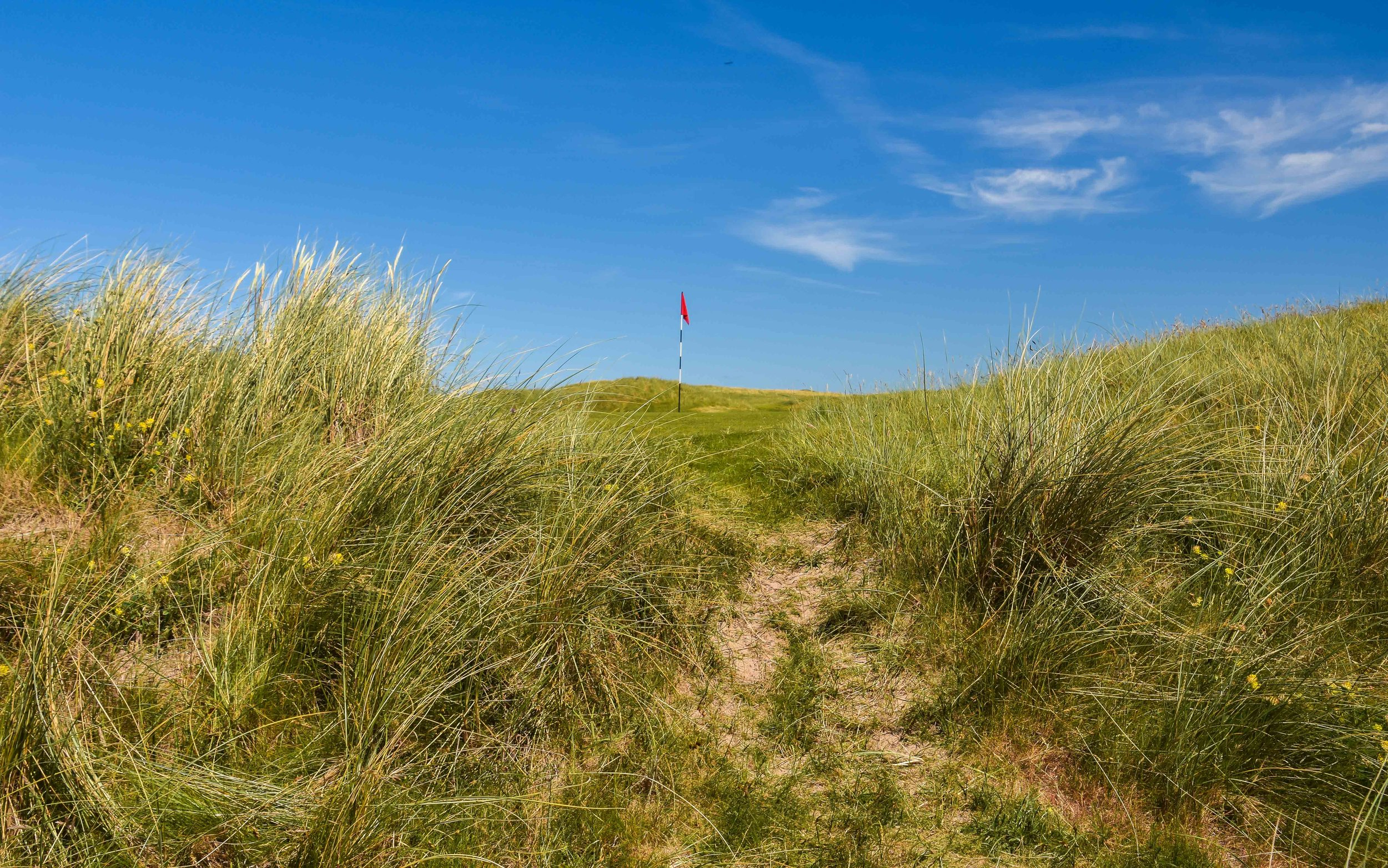 Dooks Golf Club1-7.jpg