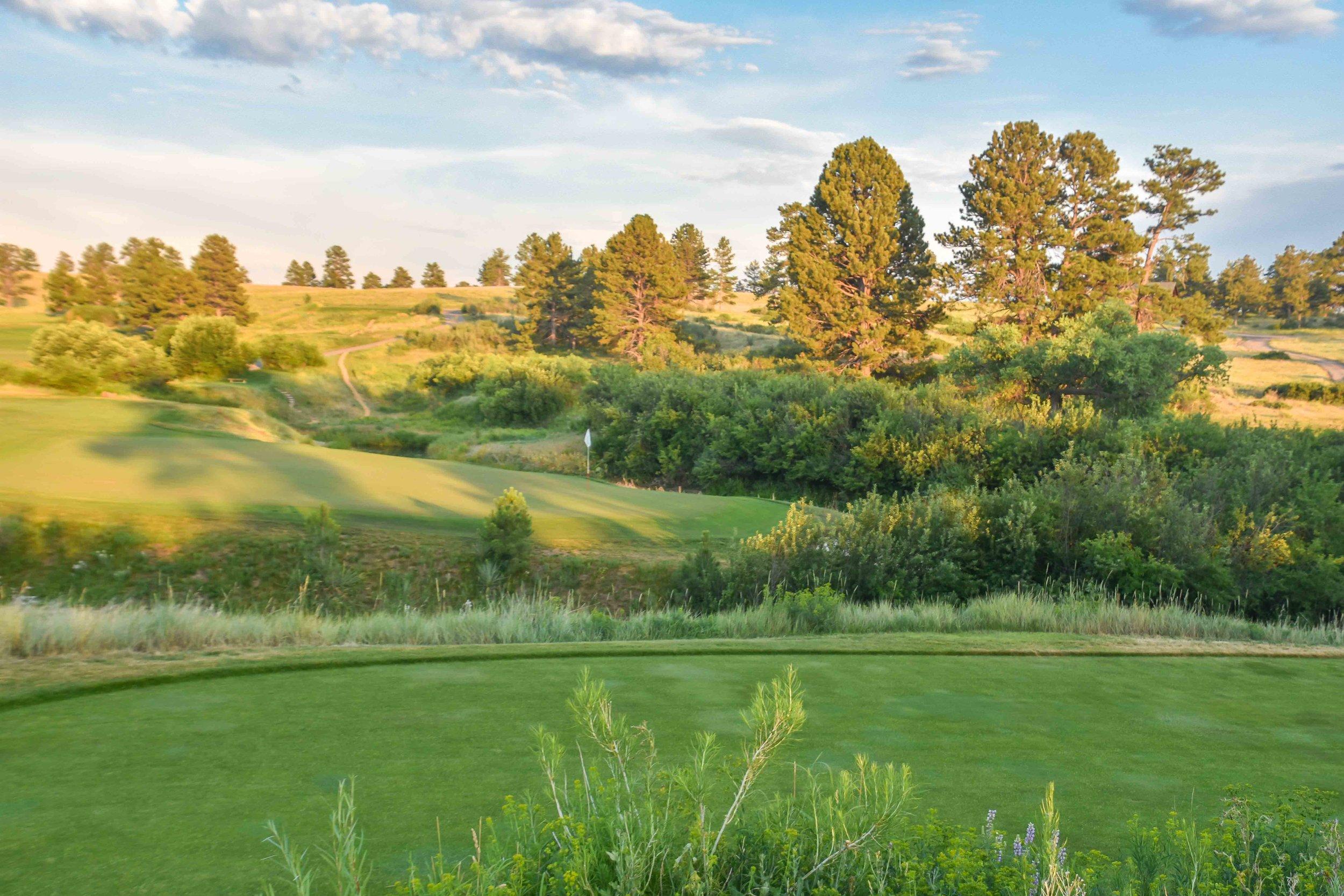 Colorado Golf Club1-127.jpg