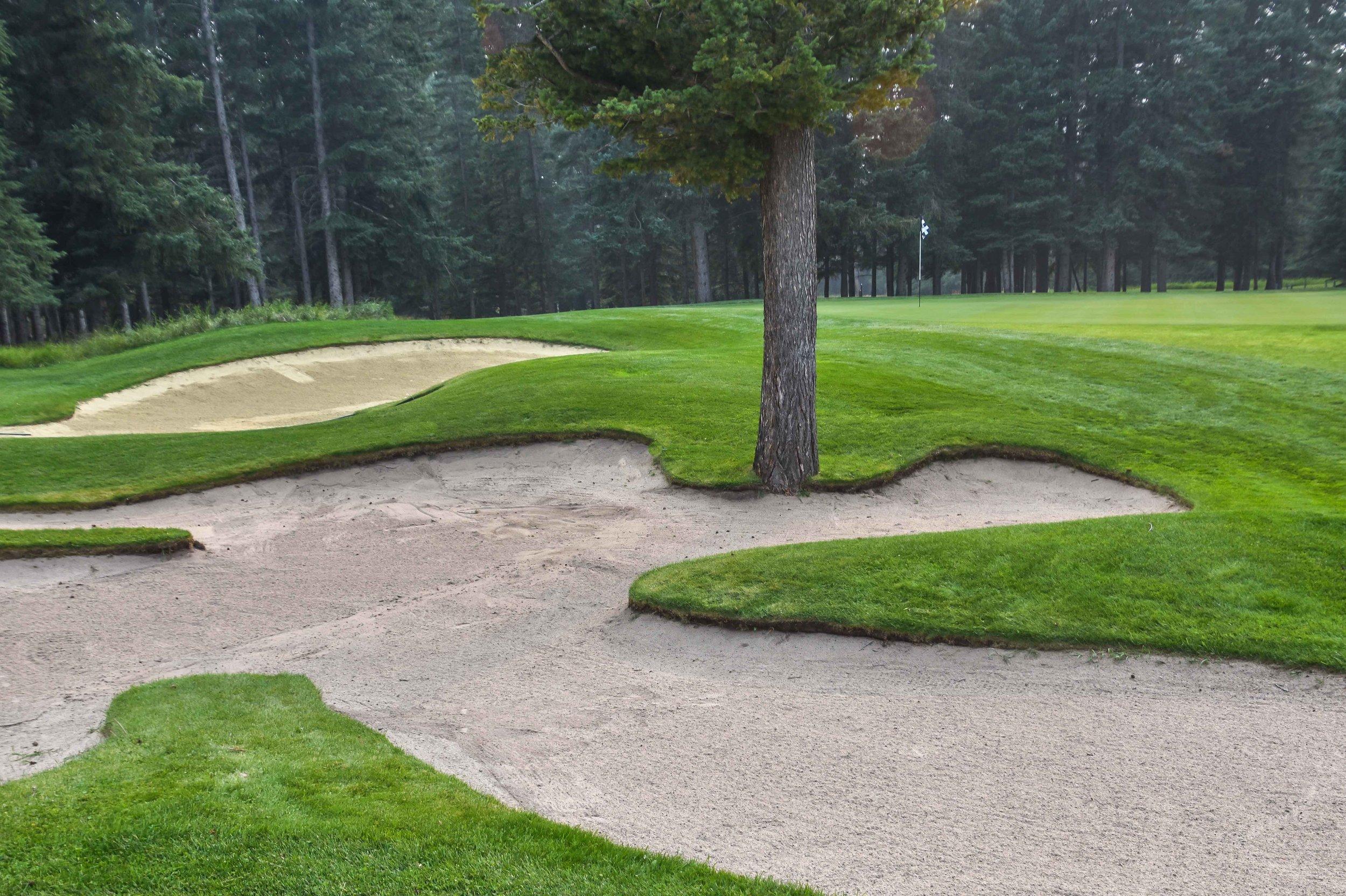 Fairmont Springs Banff Golf 1-62.jpg