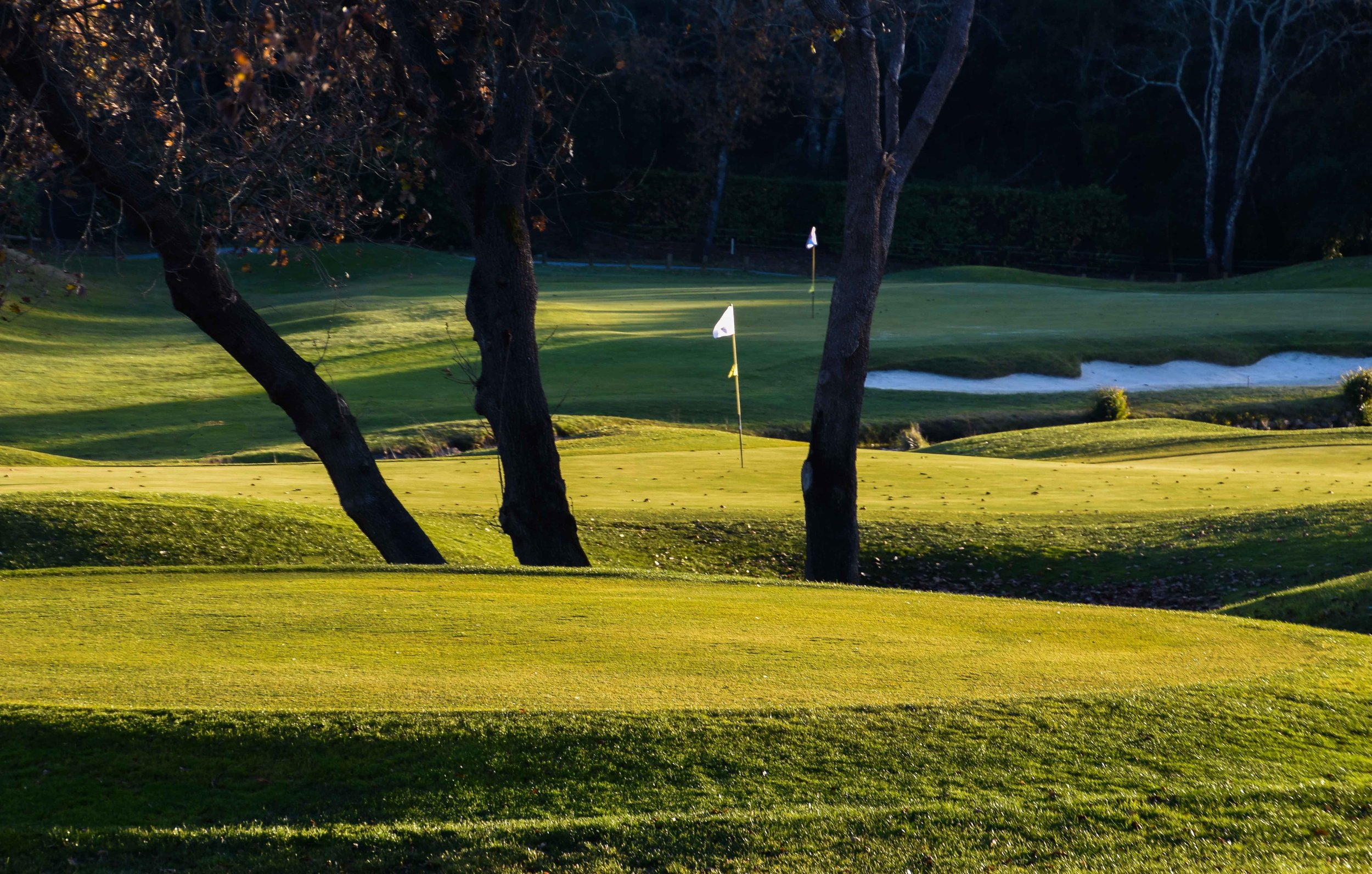 Golf Country Club Cannes-Mougins1-30.jpg