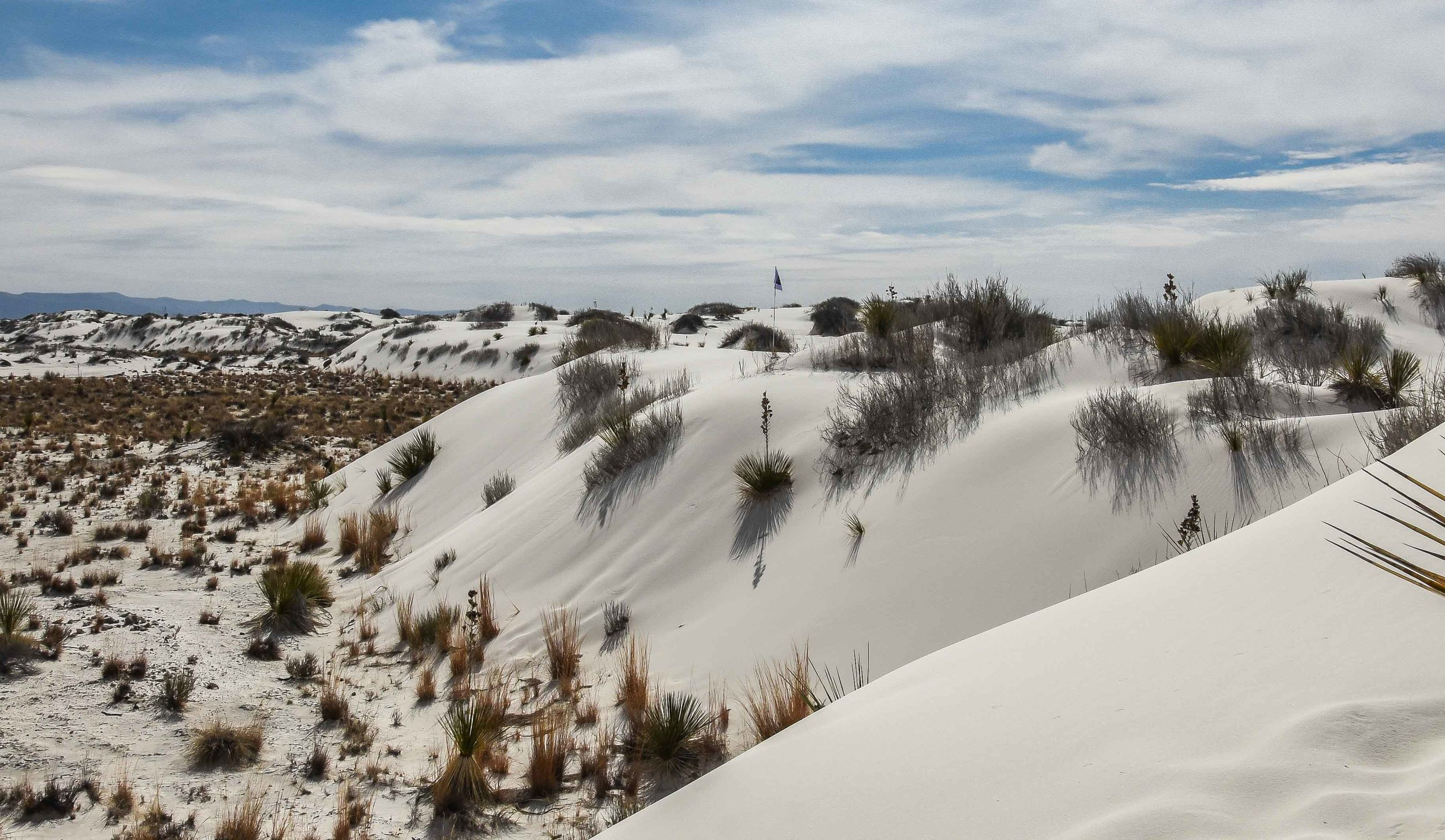 White Sands National Monument1-40.jpg