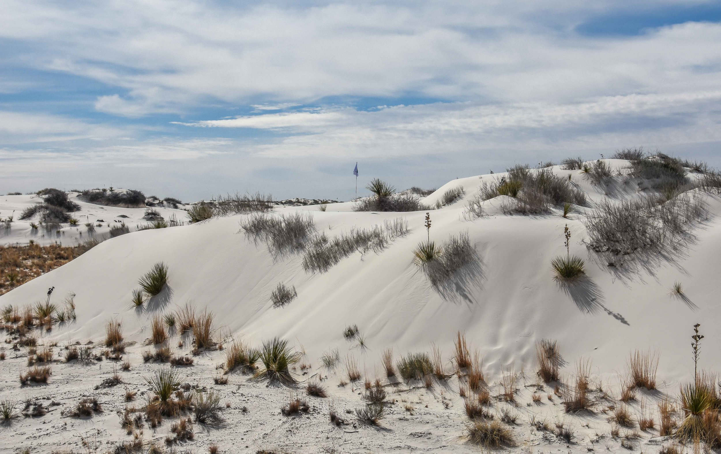 White Sands National Monument1-38.jpg
