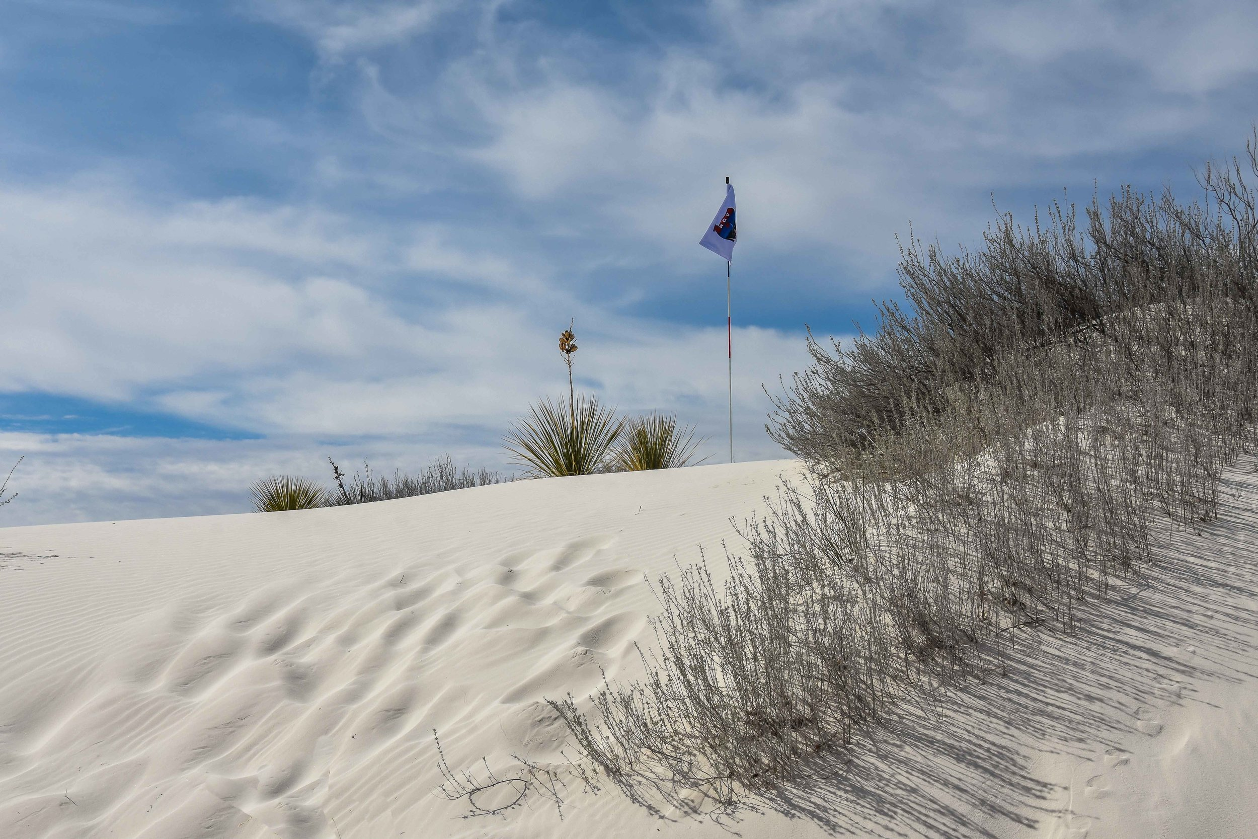 White Sands National Monument1-31.jpg