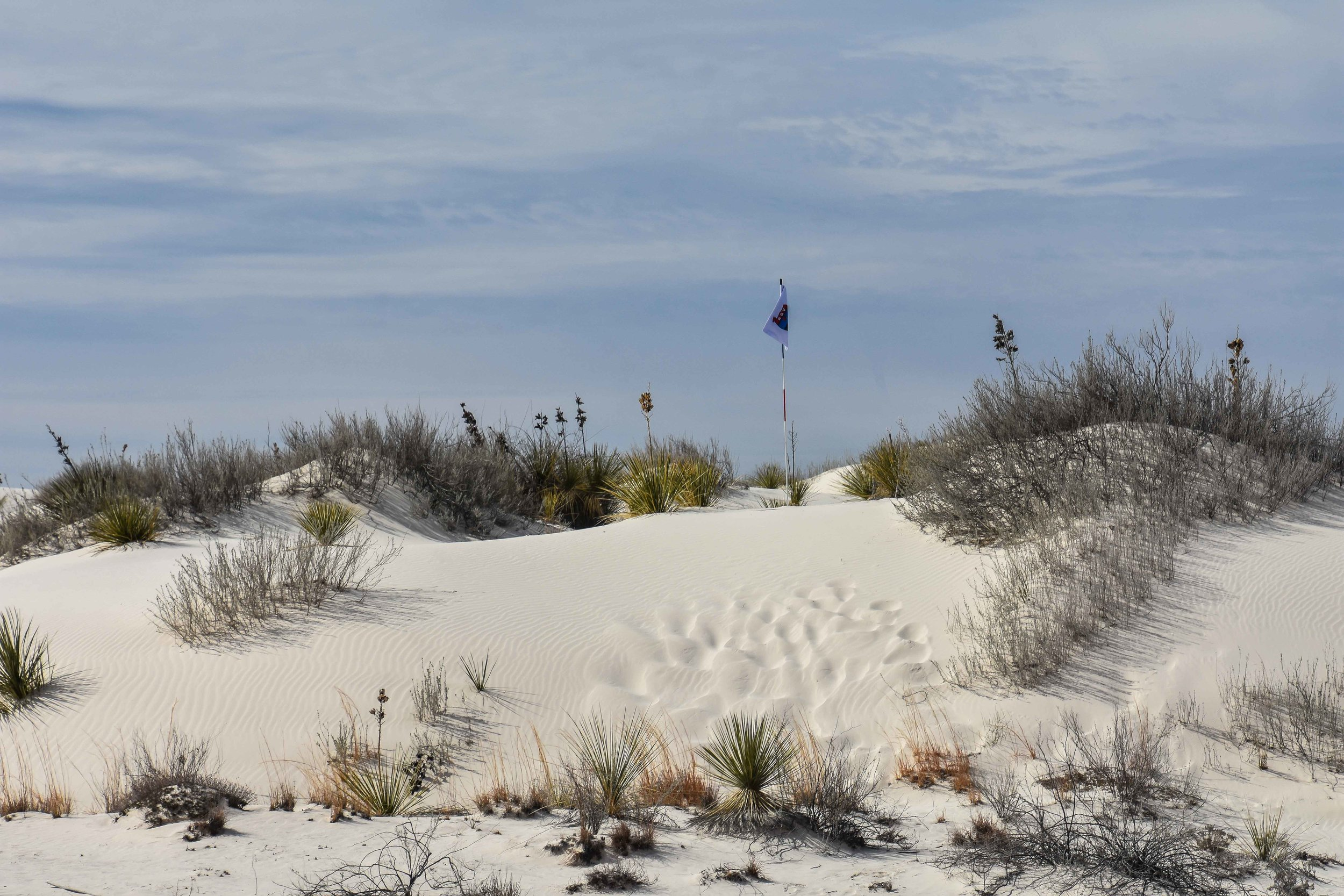 White Sands National Monument1-29.jpg