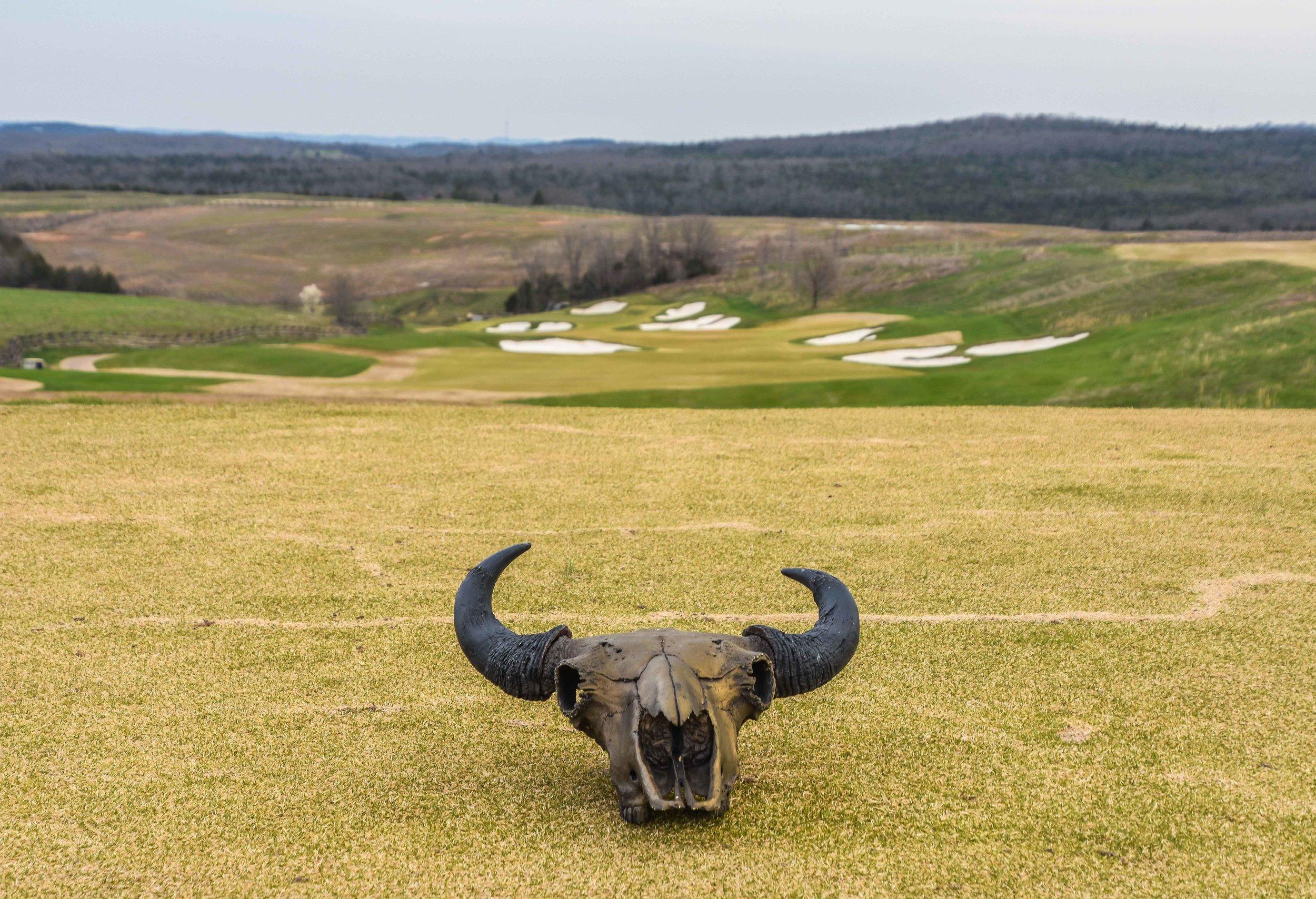Buffalo Ridge Golf Club1-40.jpg