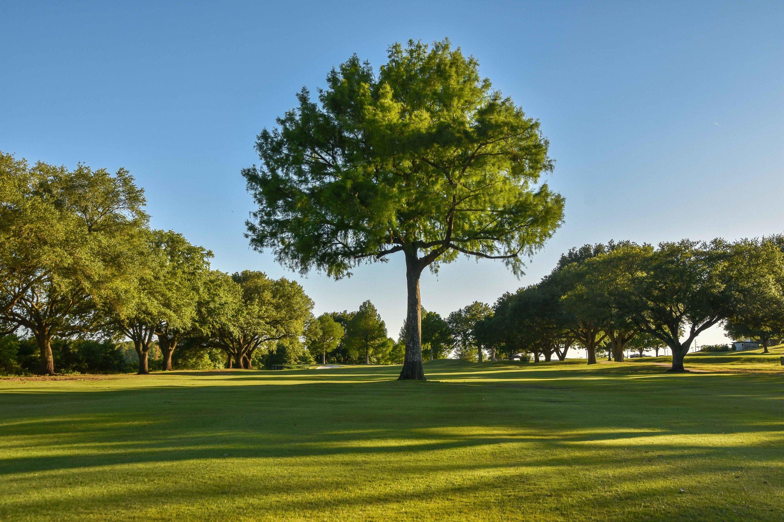Oakbourne Country Club1-66.jpg