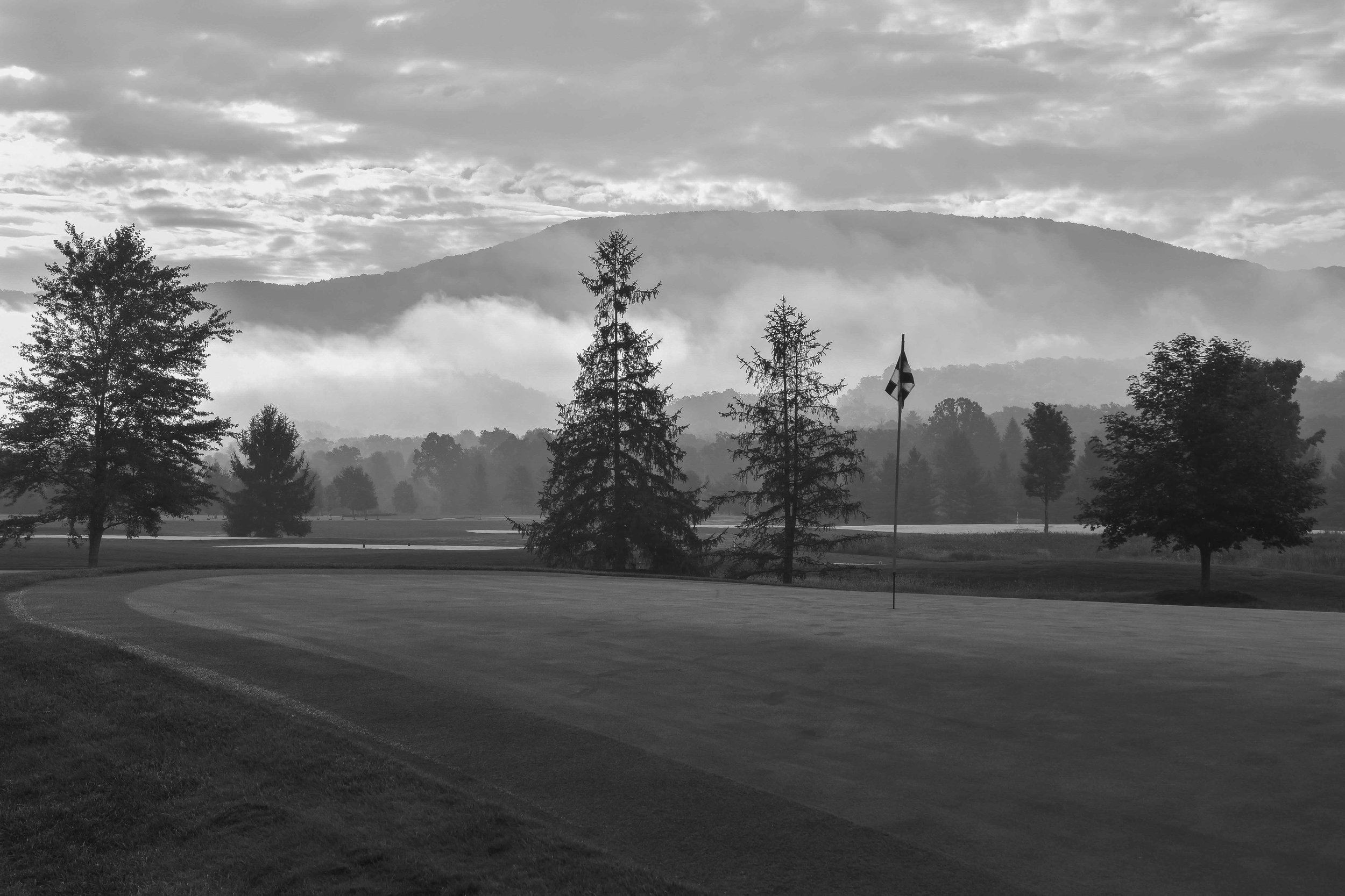 Classic foggy feelings on a morning at The Snead.