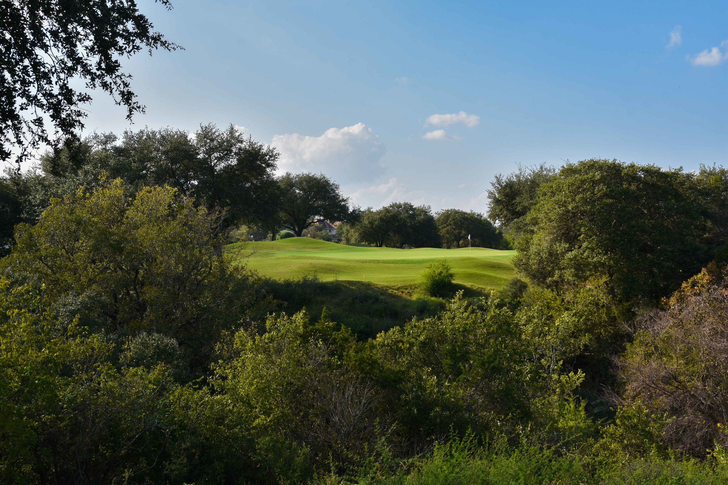 The 8th hole at Barton Creek Country Club. A near ace miss here.